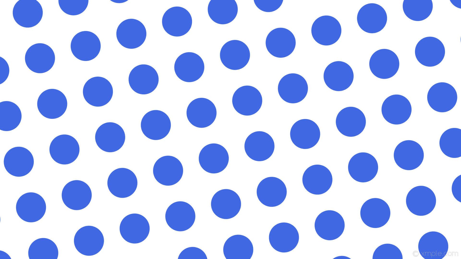 wallpaper white polka dots blue spots royal blue #ffffff #4169e1 105° 125px  197px