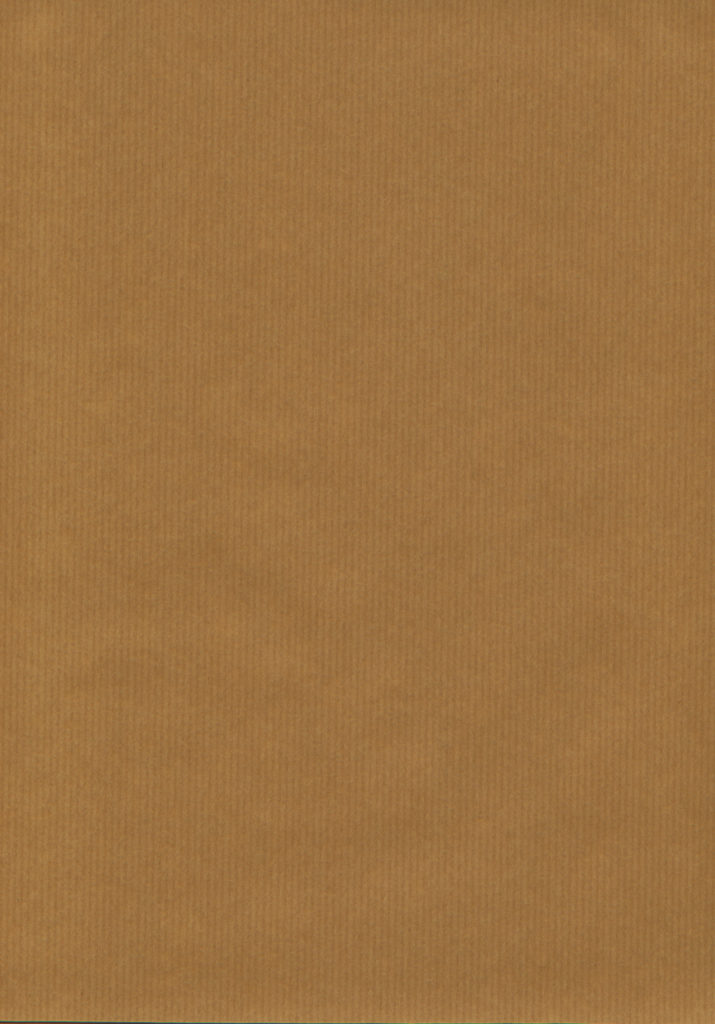 KRAFT_PAPER_TEXTURE_by_louboumian.jpg (1754×2511)   레퍼런스   Pinterest