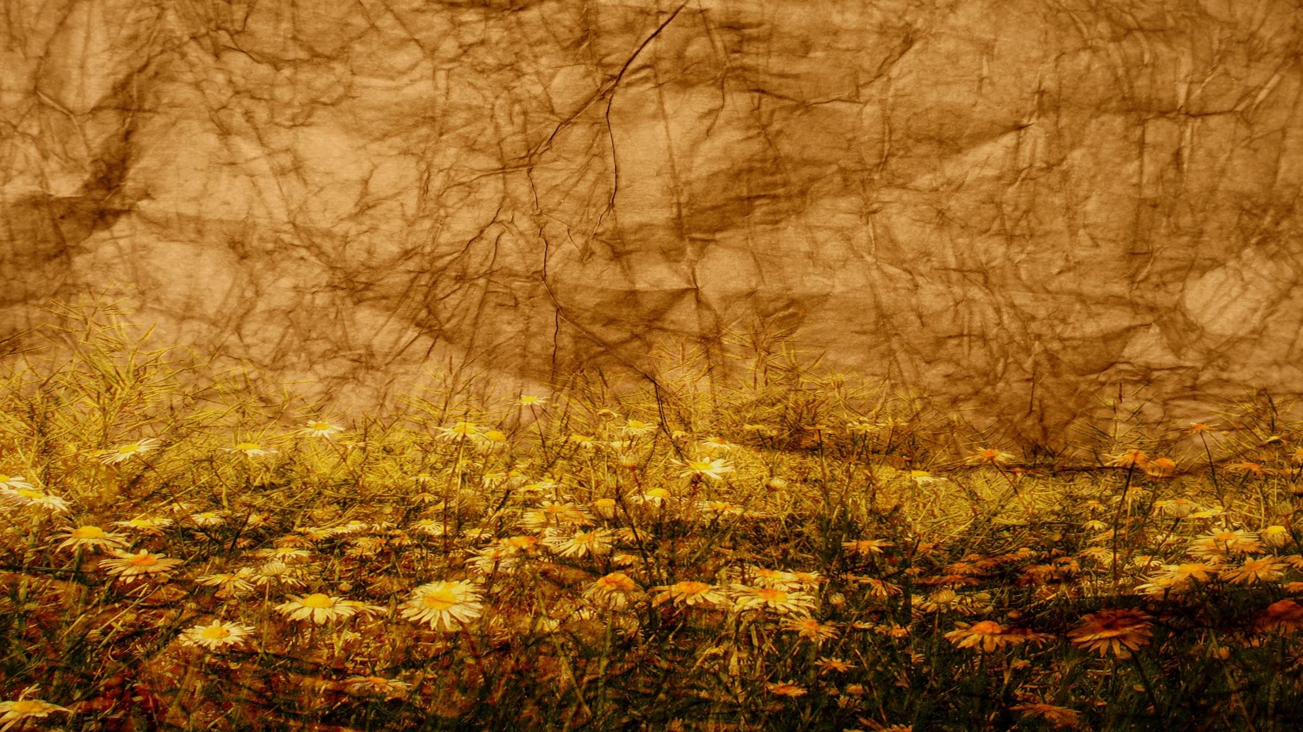 Textured Background 713561 …