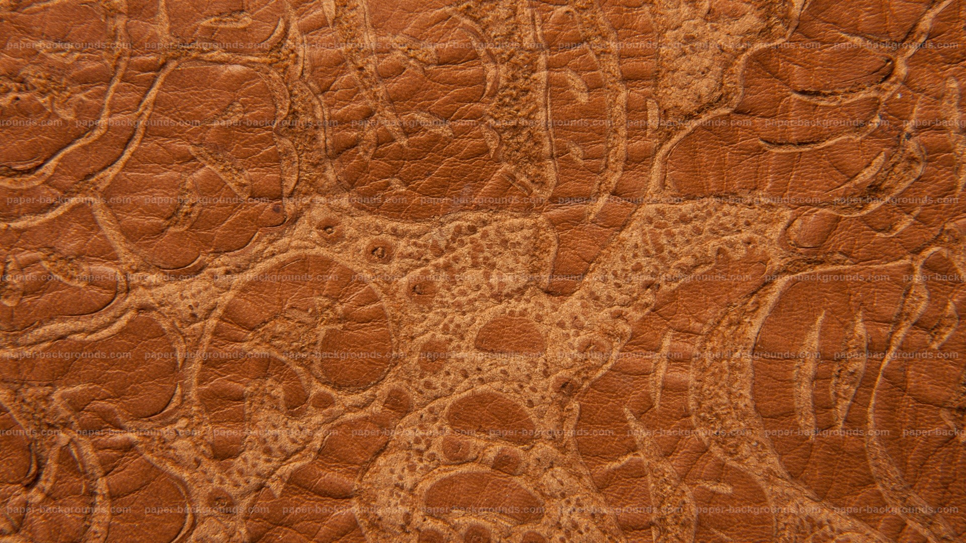 Brown Grunge Embossed Leather Texture HD 1920 x 1080p