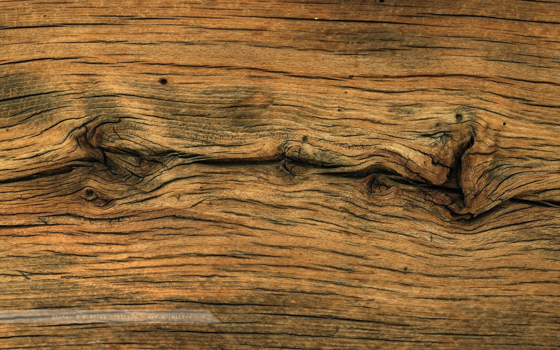 … 50 HD Wood Wallpapers For Free Download