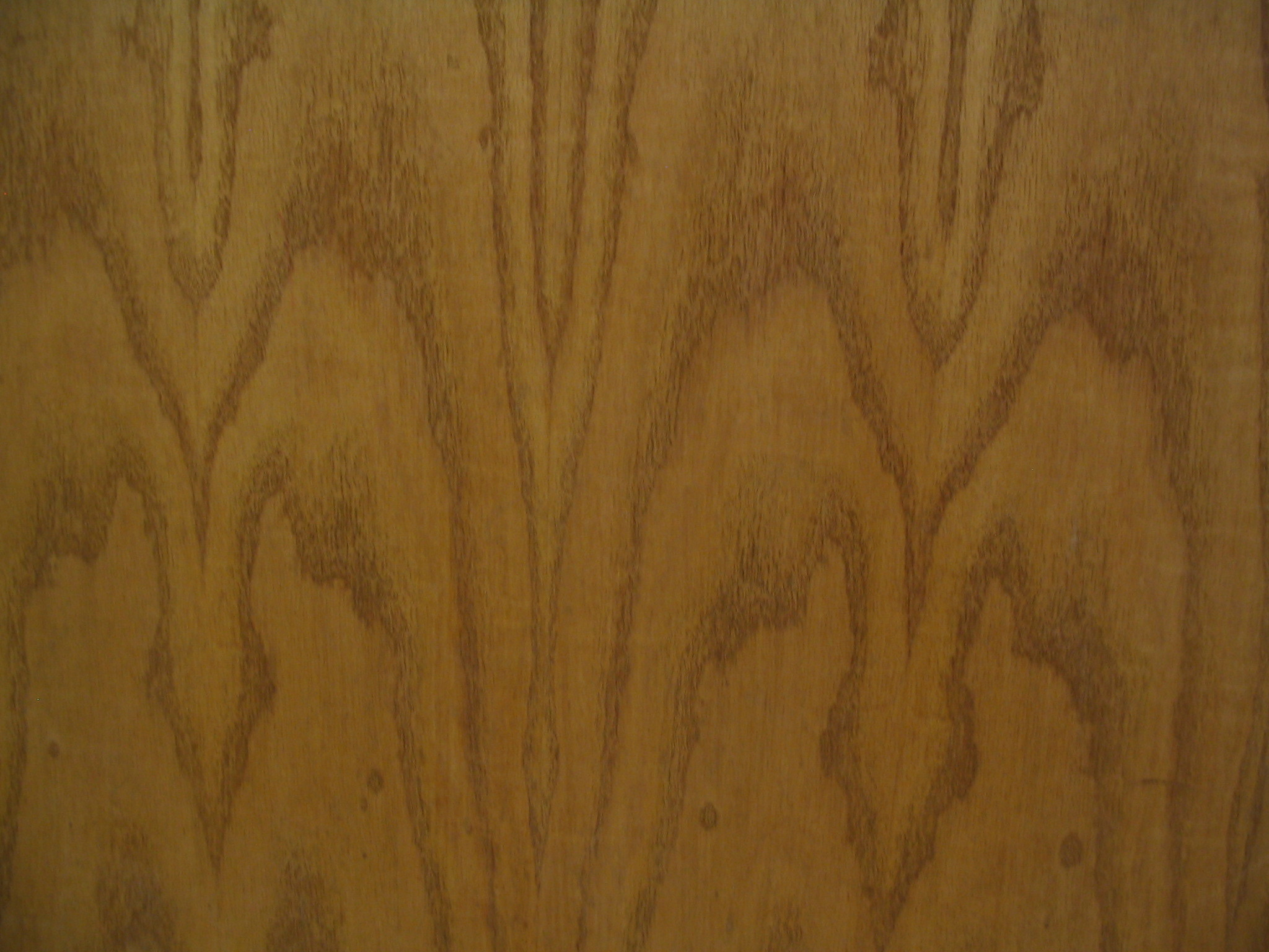 Wood Identification Guide