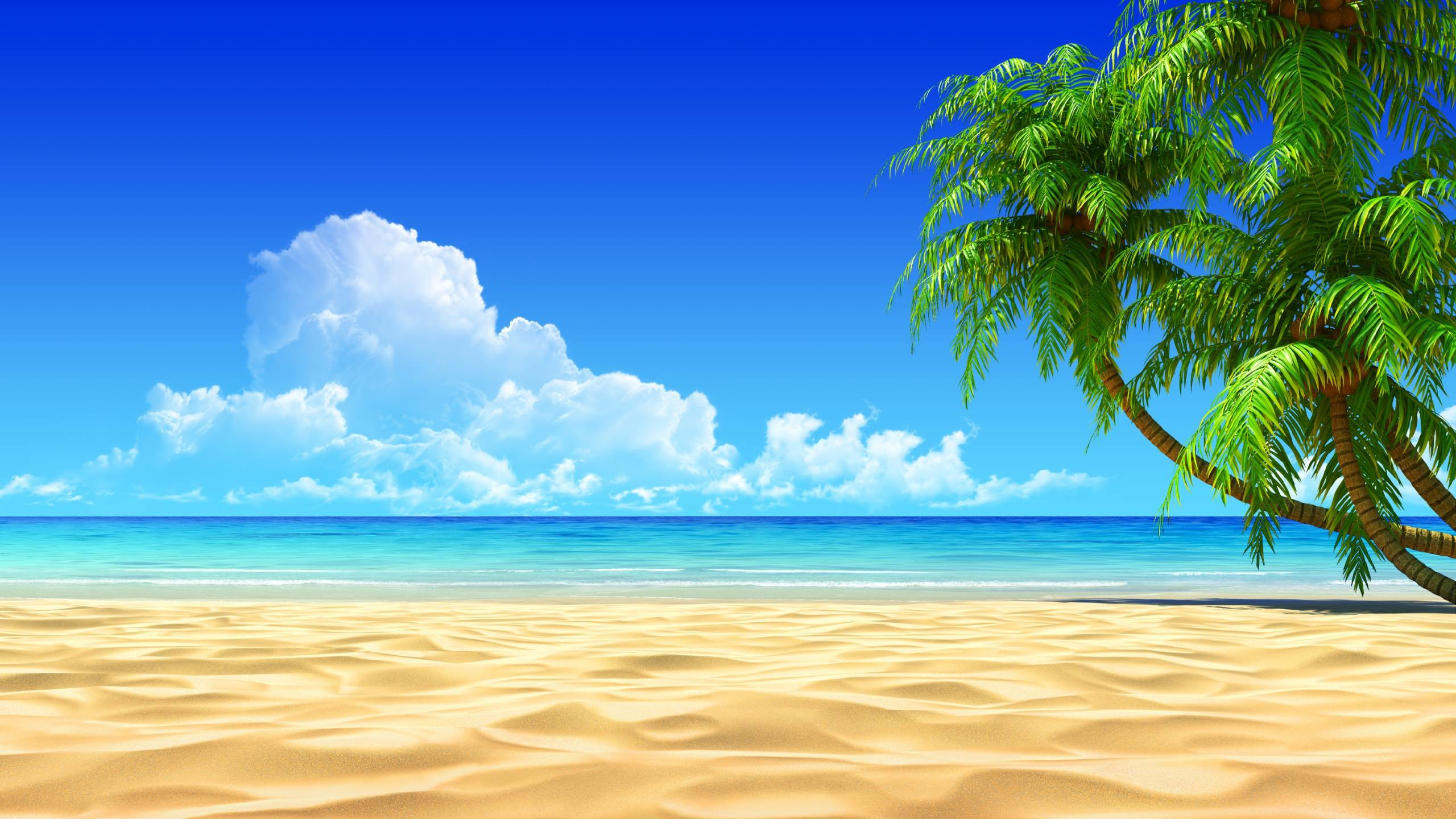 Tropical Beach Wallpaper Wallpapers HD, Wallpaper, Tropical Beach .