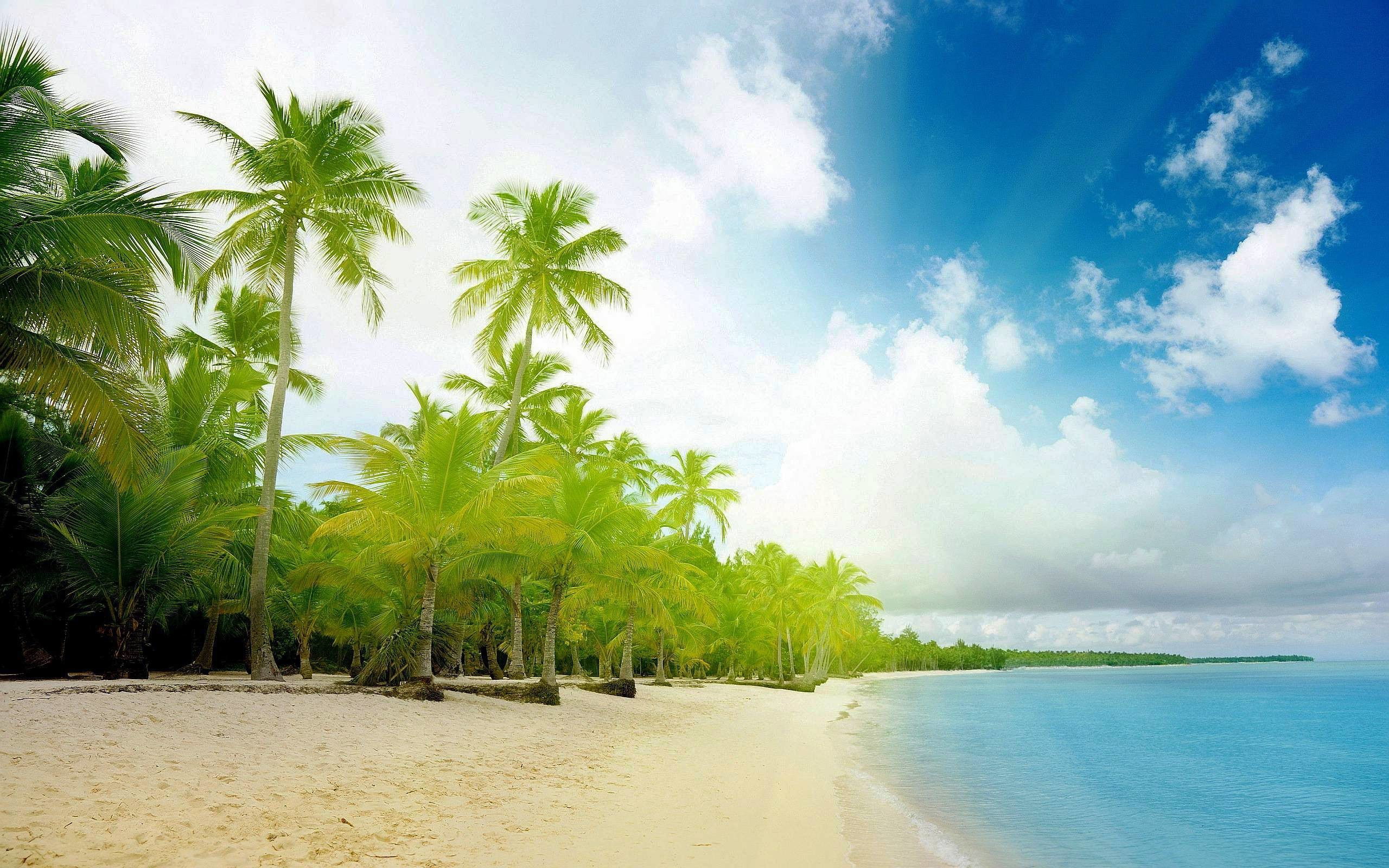 Exotic Beaches Wallpapers Hd 1080P 12 HD Wallpapers | aladdino.