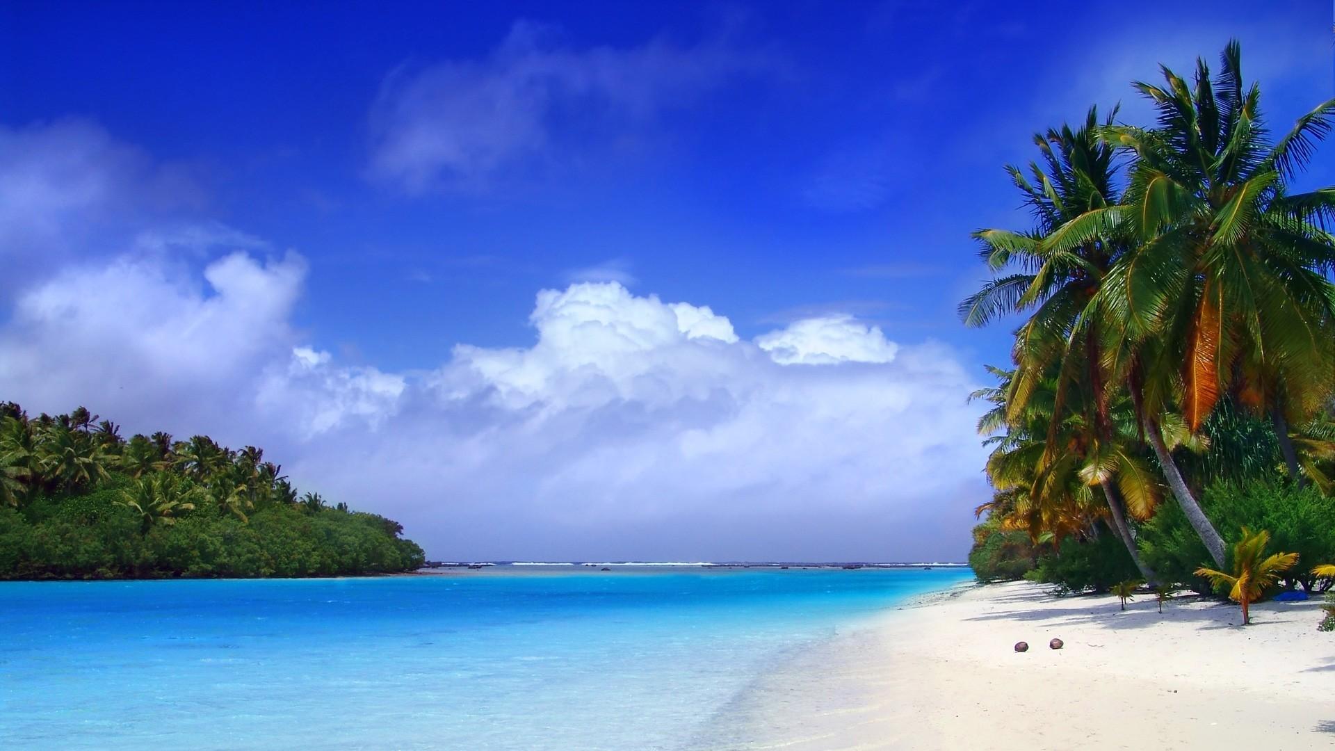 Preview wallpaper beach, tropics, sea, sand, palm trees, clouds 1920×1080