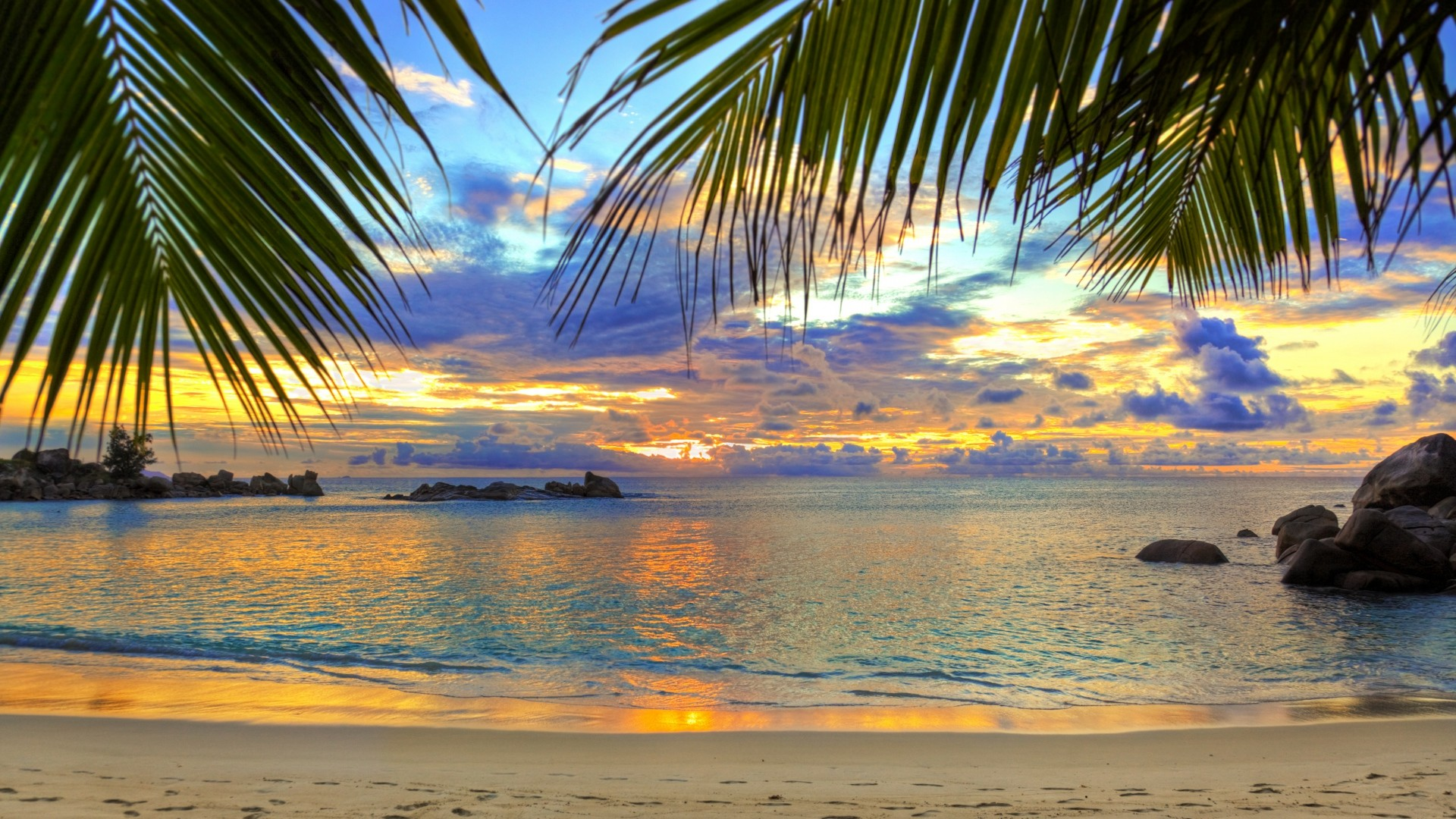 Preview wallpaper beach, tropics, sea, sand, palm trees 1920×1080