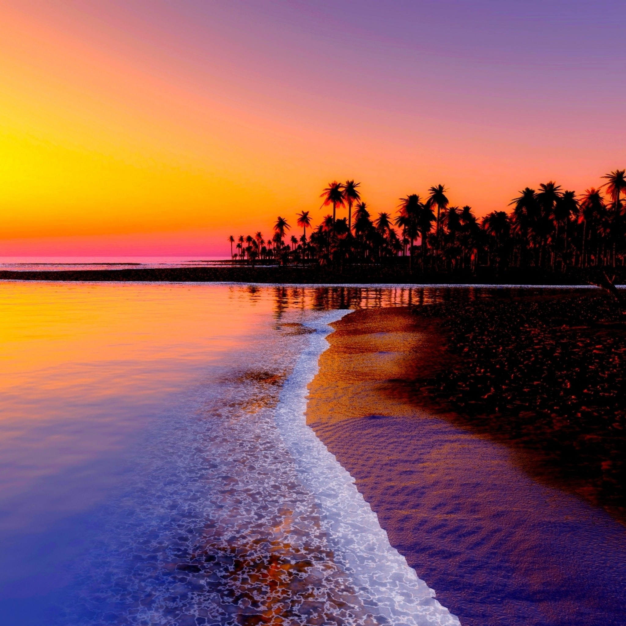Preview wallpaper beach, tropics, sea, sand, palm trees, sunset 2048×2048