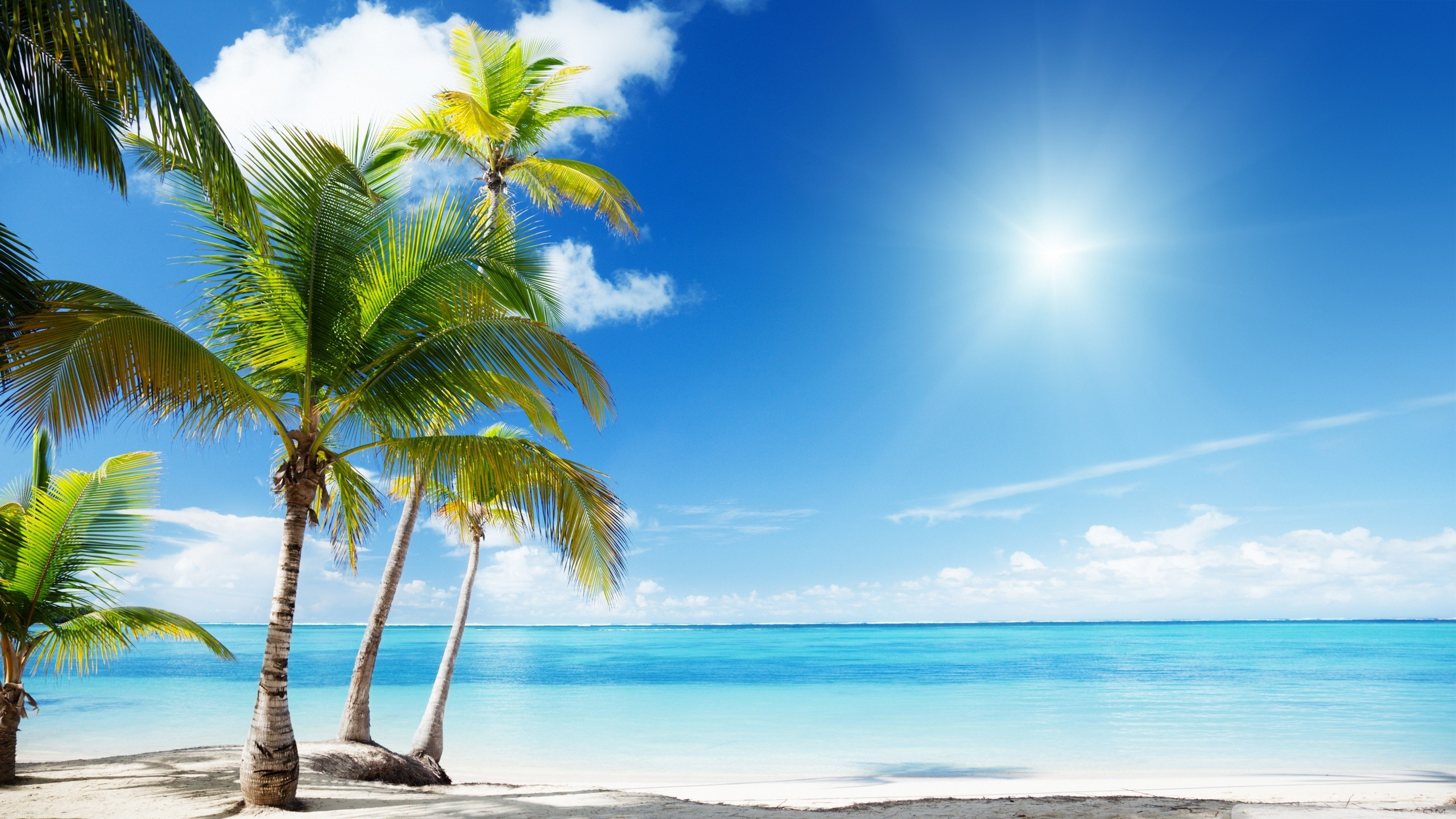 … Tropical Beach Paradise HD desktop wallpaper Widescreen High .