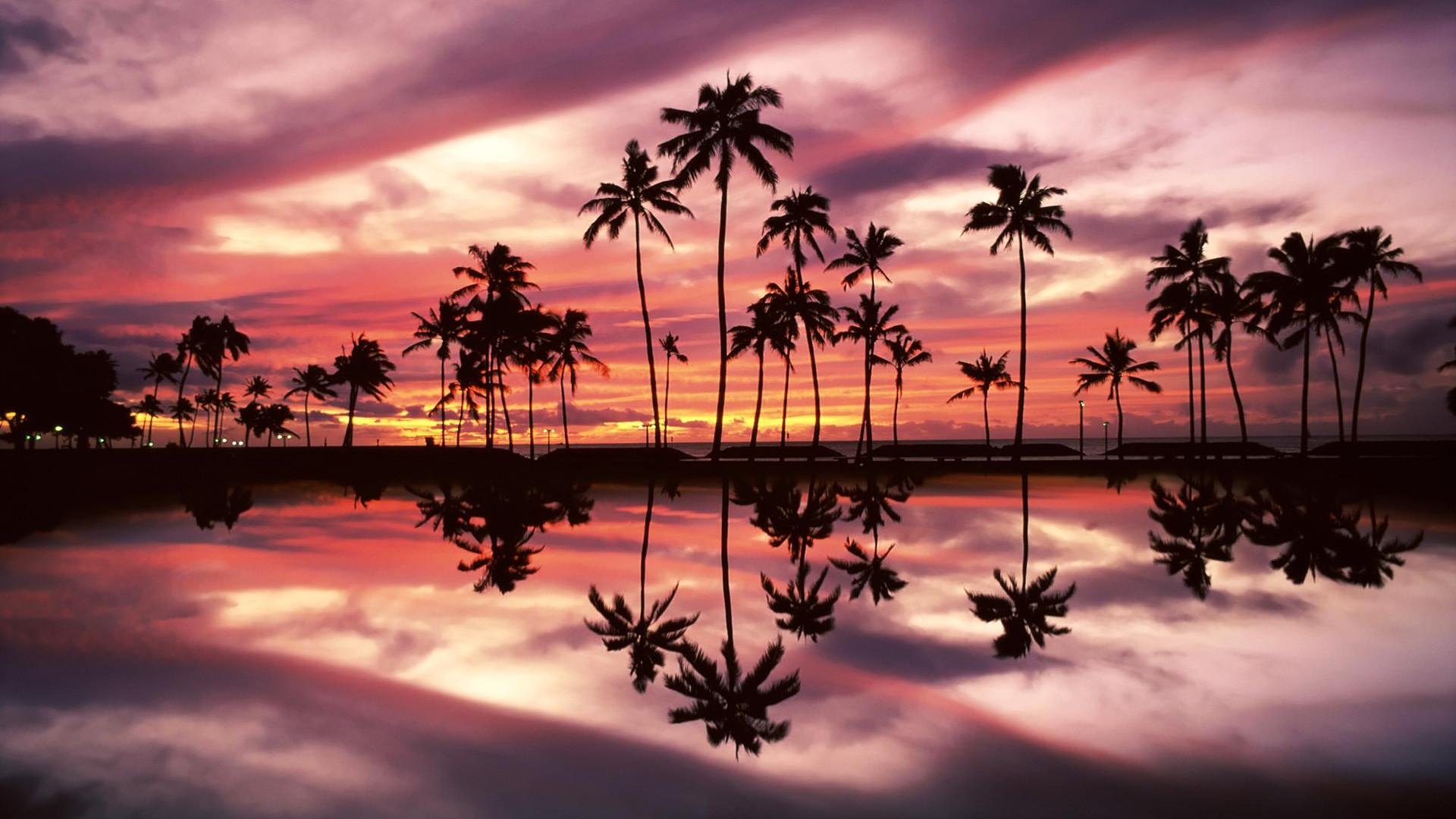 … hawaii beach night #2