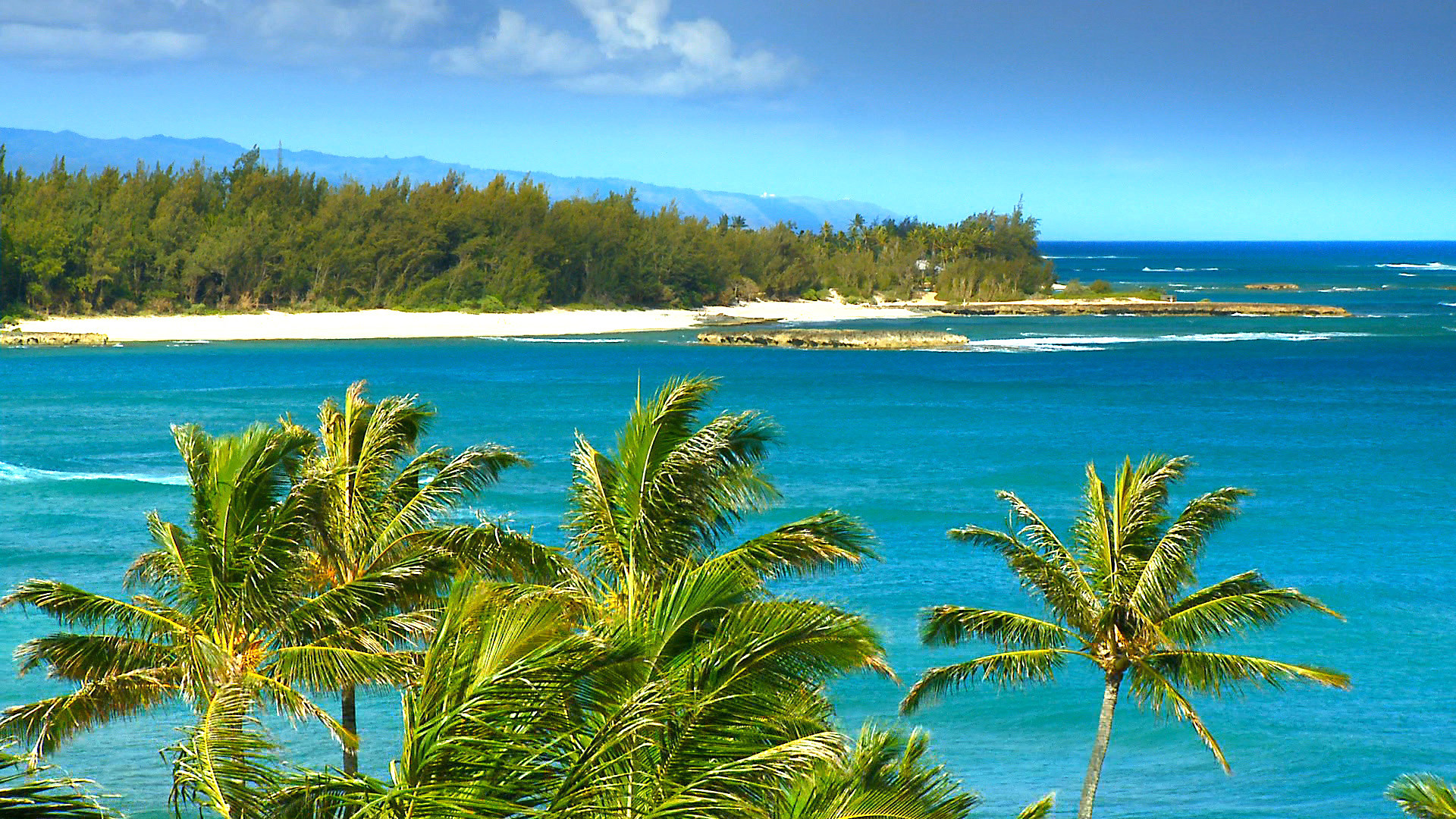SEE The Most Beautiful Hawaii Beaches HD Blu-Ray Video DVD: The #1