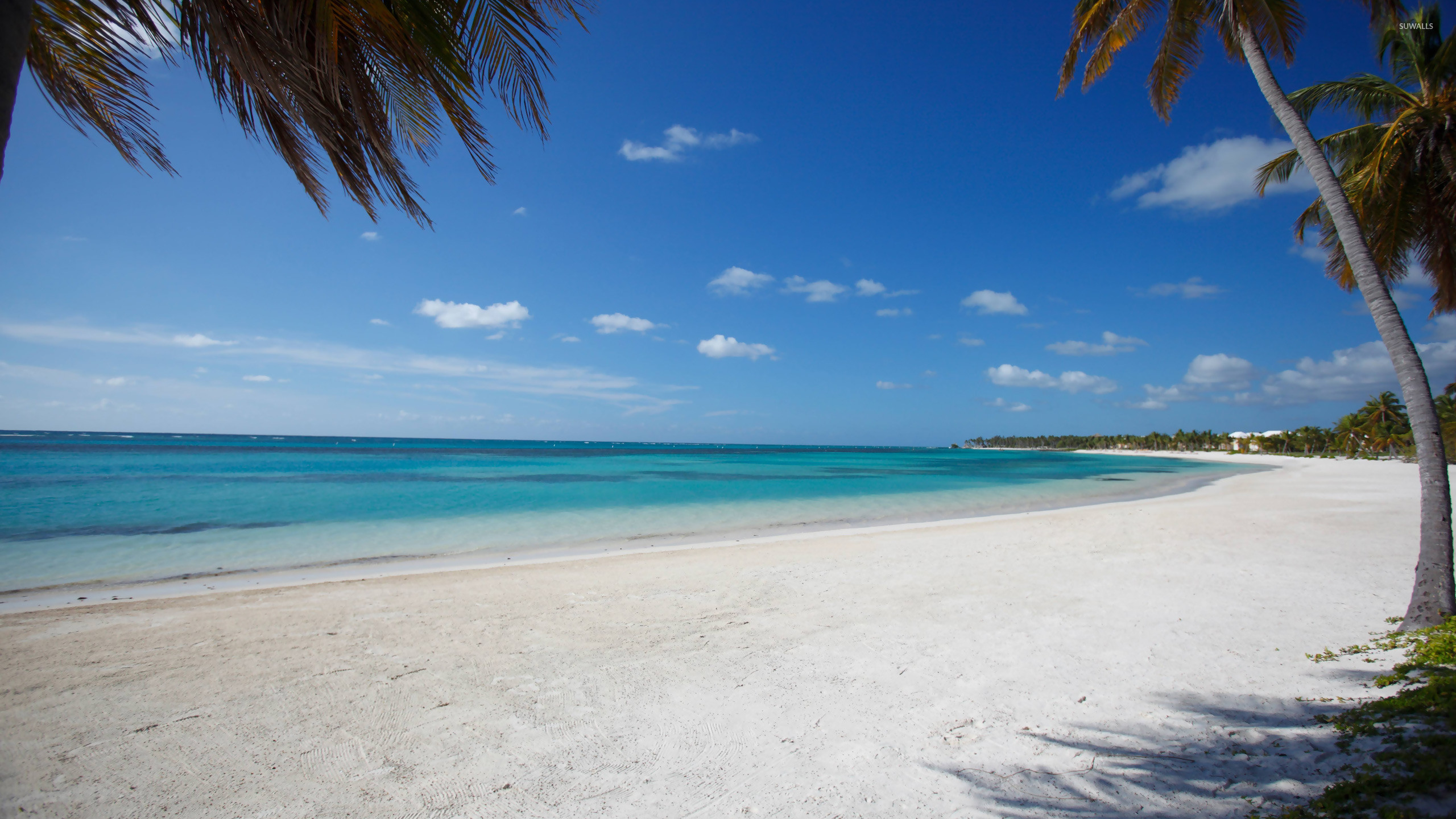Bavaro, Punta Cana wallpaper – Beach wallpapers – #11666 · dominican  republic …