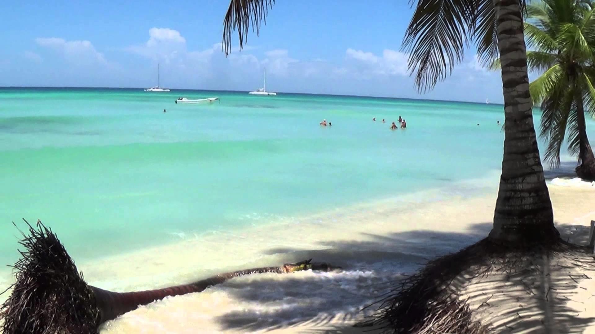 Beautiful Beach Saona Island (Dominican Republic 2014)