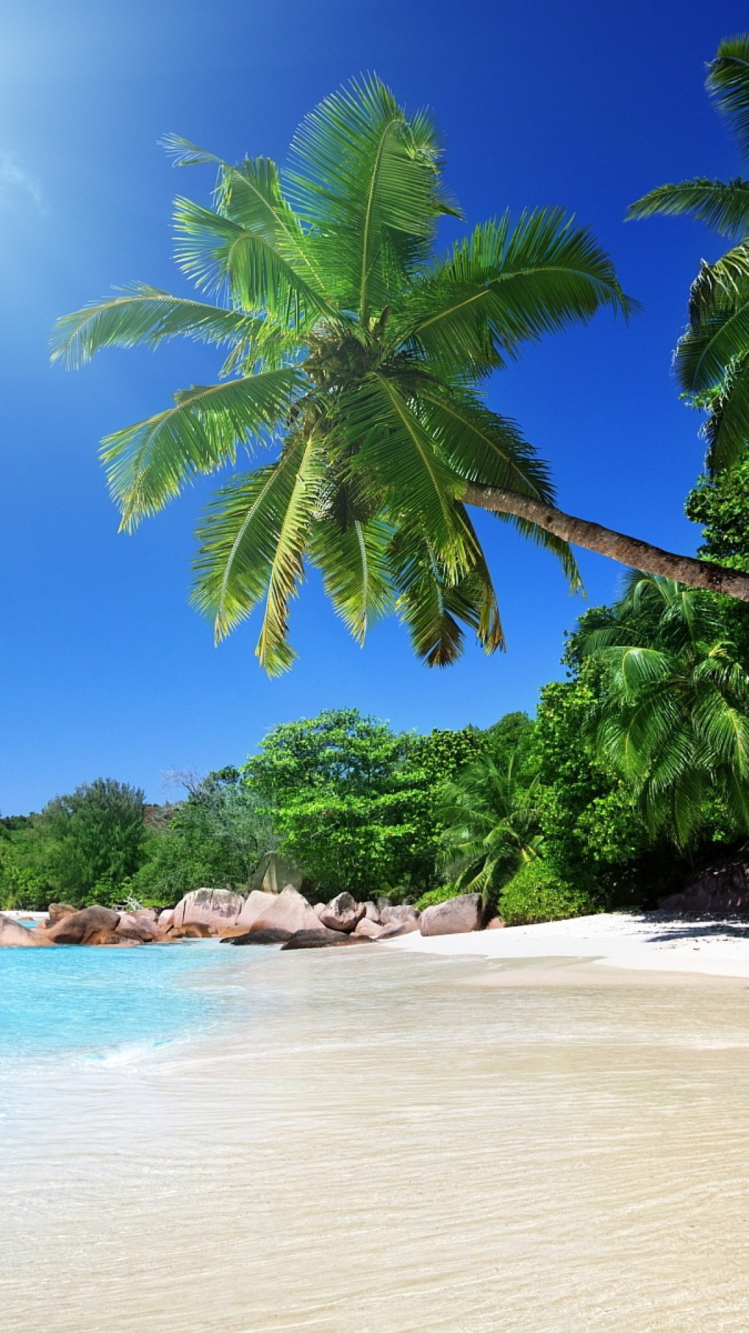 Preview wallpaper beach, sand, palm trees, tropical 1080×1920