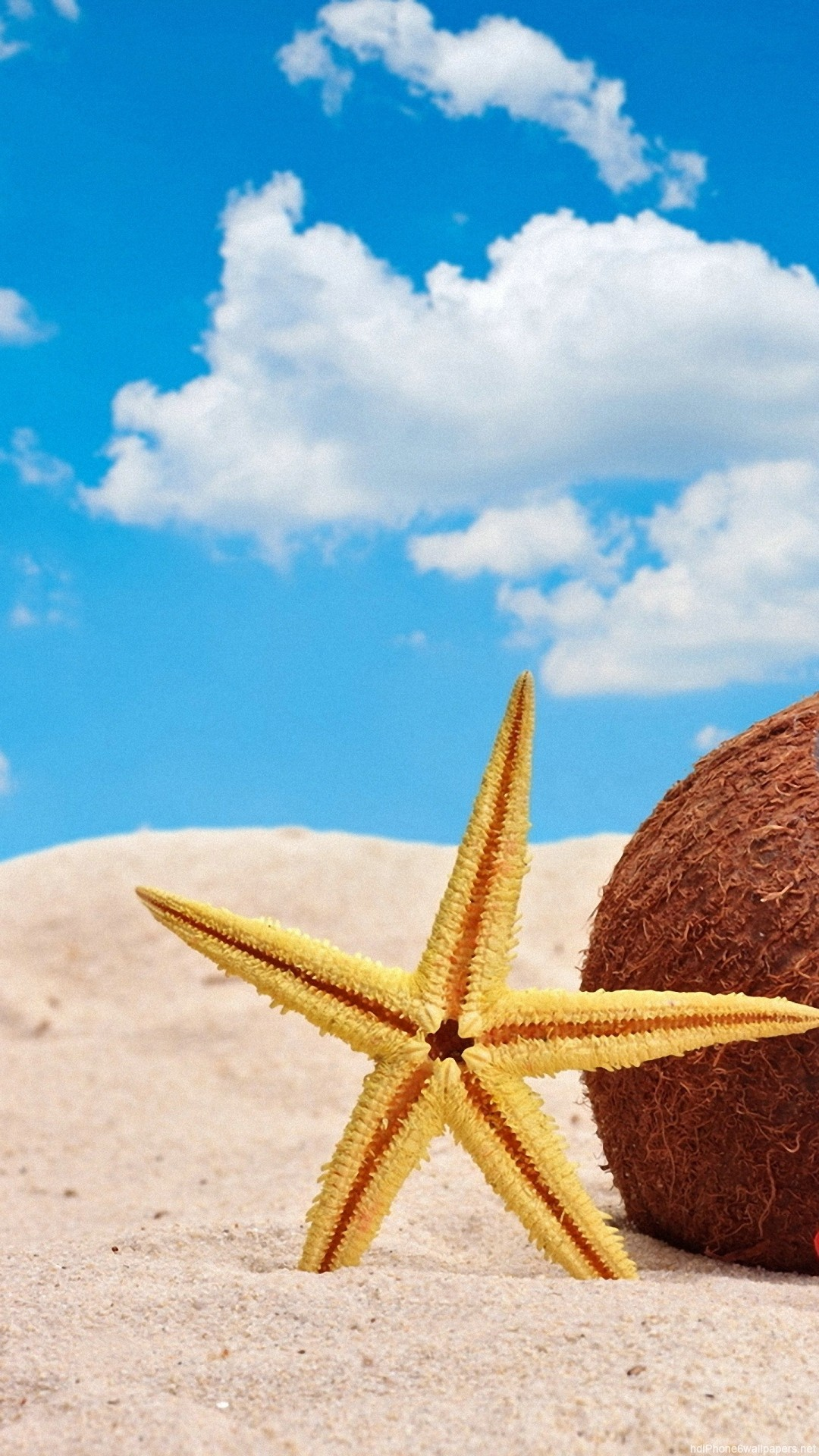 star fish summer beach iPhone 6 wallpapers HD – 6 Plus backgrounds