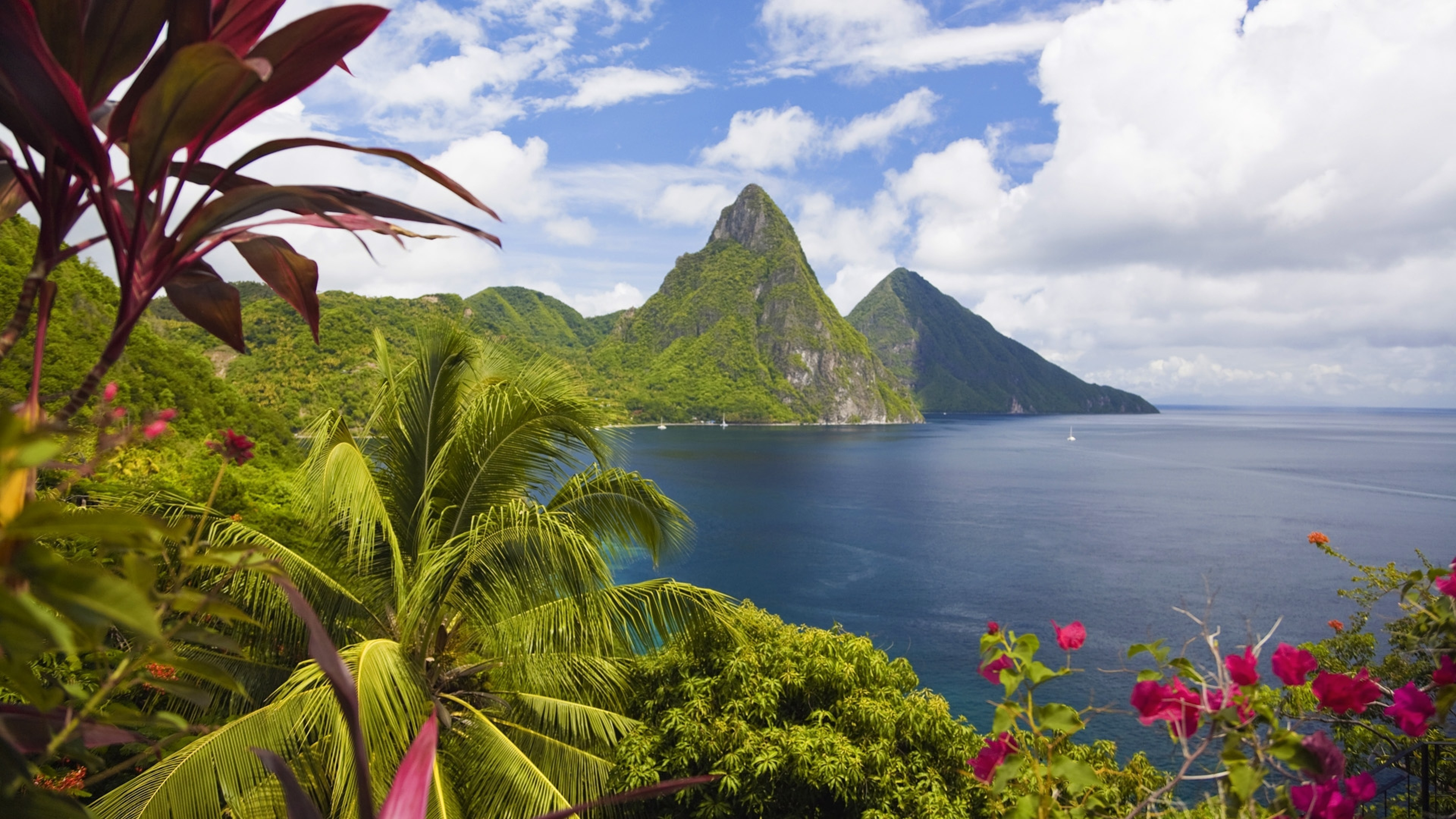 Preview wallpaper caribbean, ocean, palm trees, peaks 3840×2160