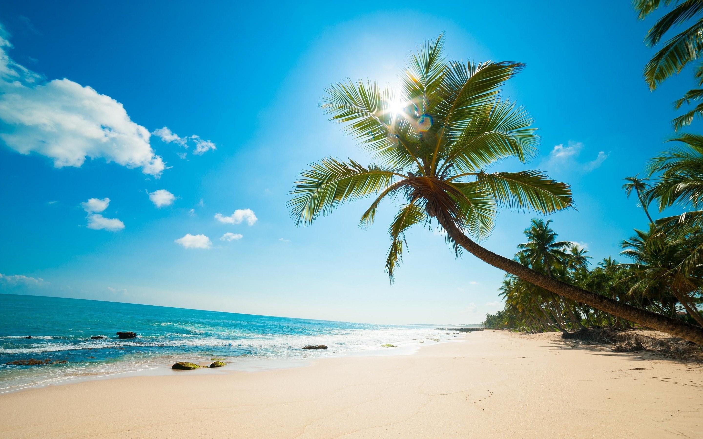 Caribbean Beach 870810