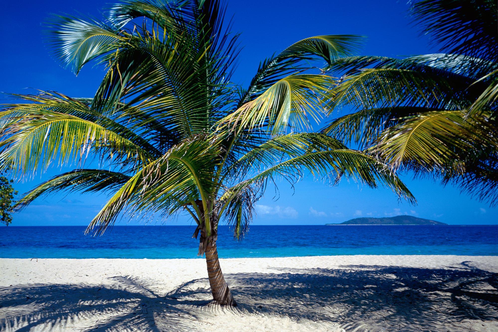 Caribbean Wallpapers BestWallpaperZone.com