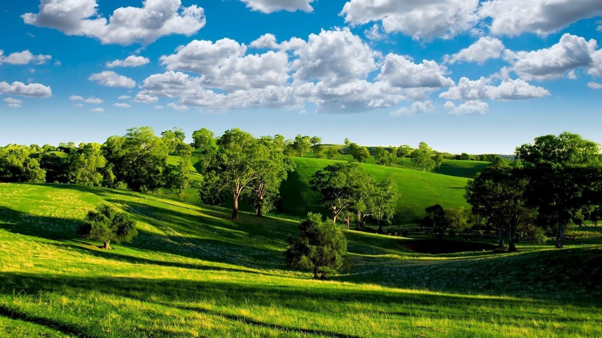 Wallpaper summer, hills, trees, green, meadows, clouds, sky,