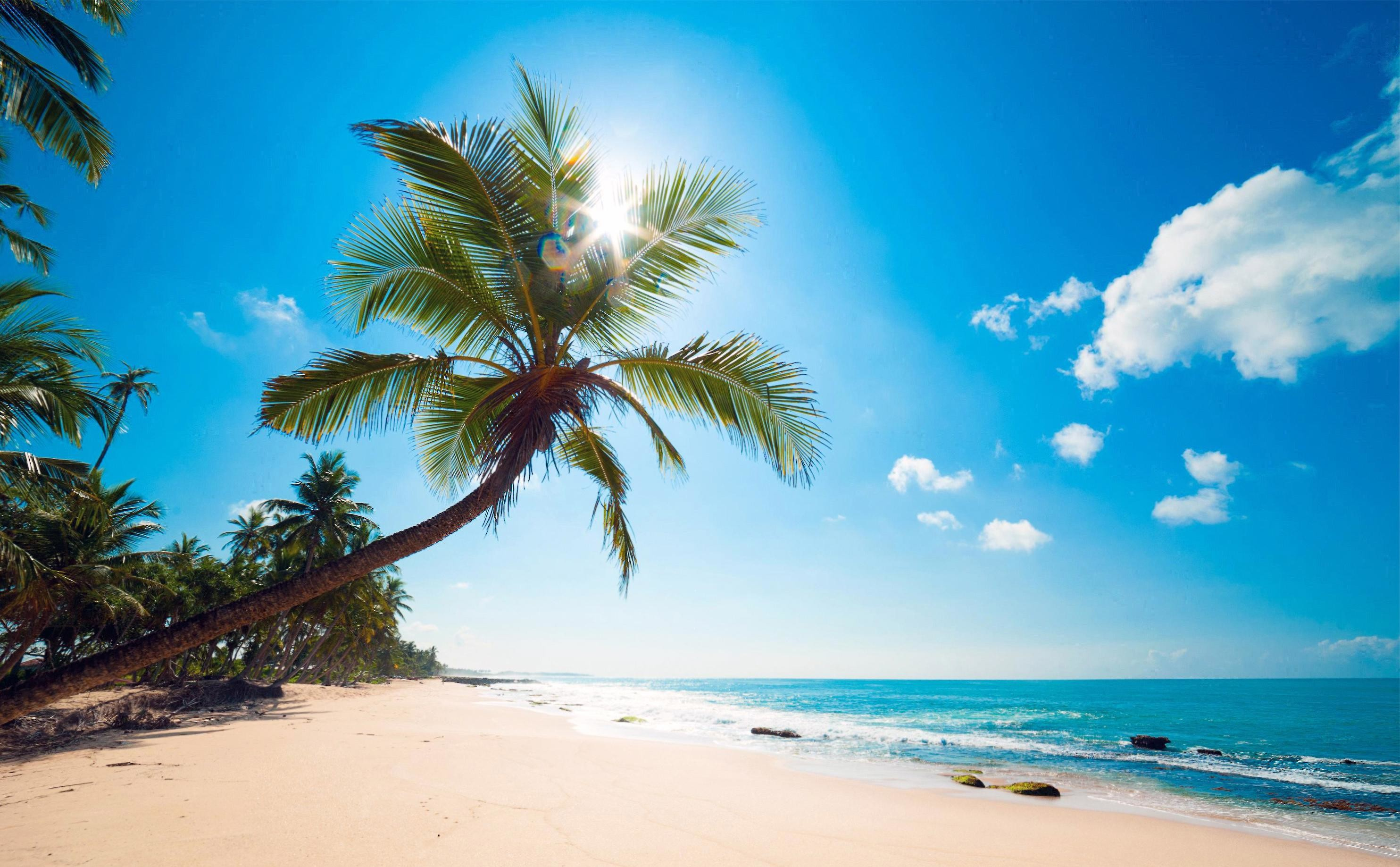 amazing sunny beach – (#105647) – High Quality and Resolution . …