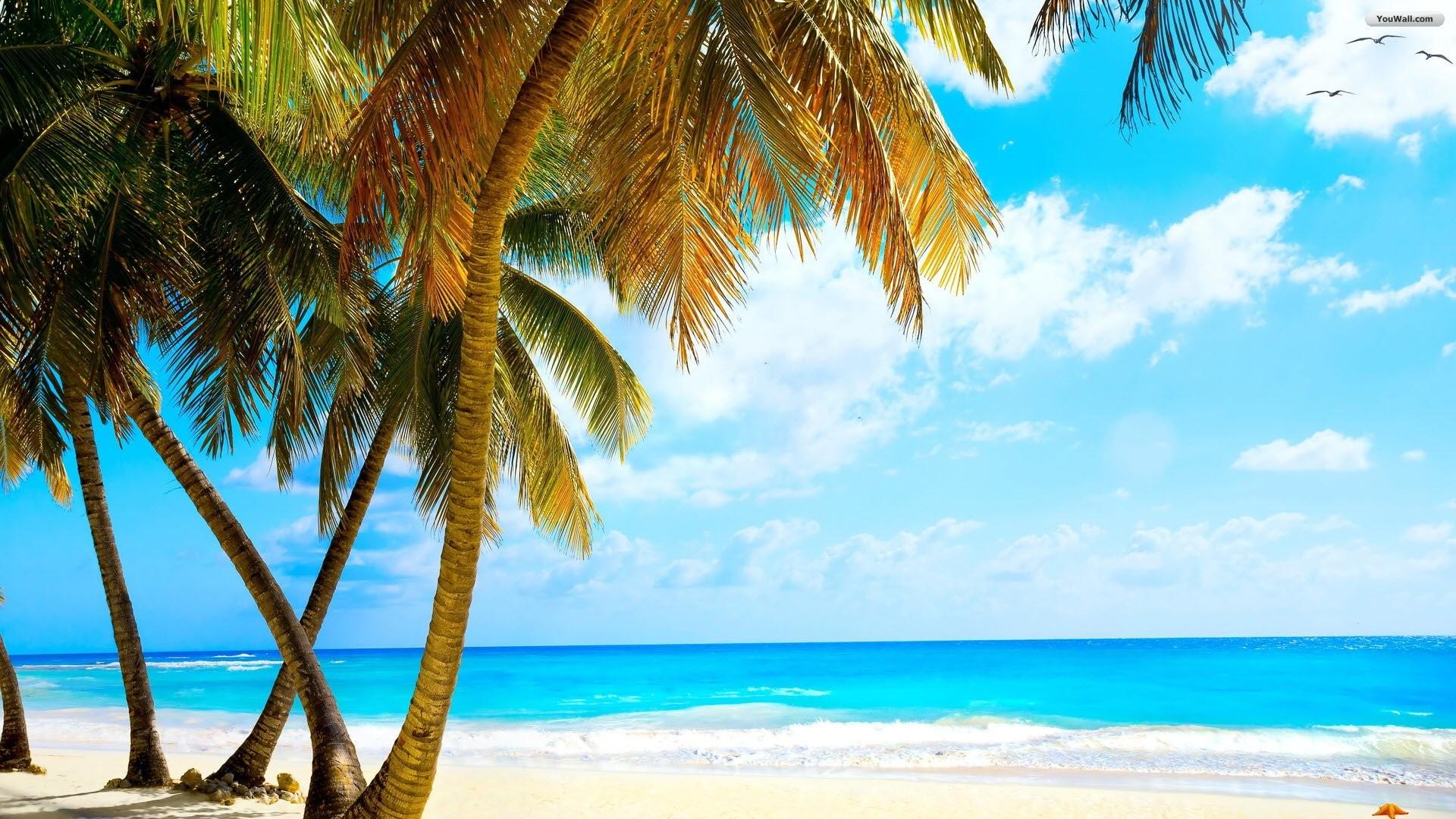 YouWall – Wonderful Tropical Beach Wallpaper – Wallpaper .