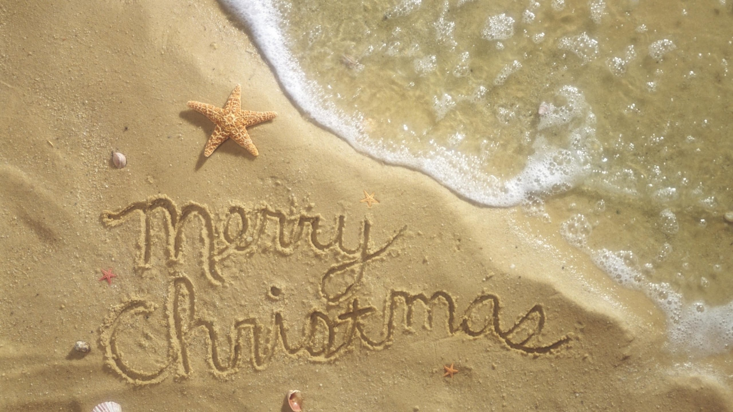 Christmas Beach Desktop