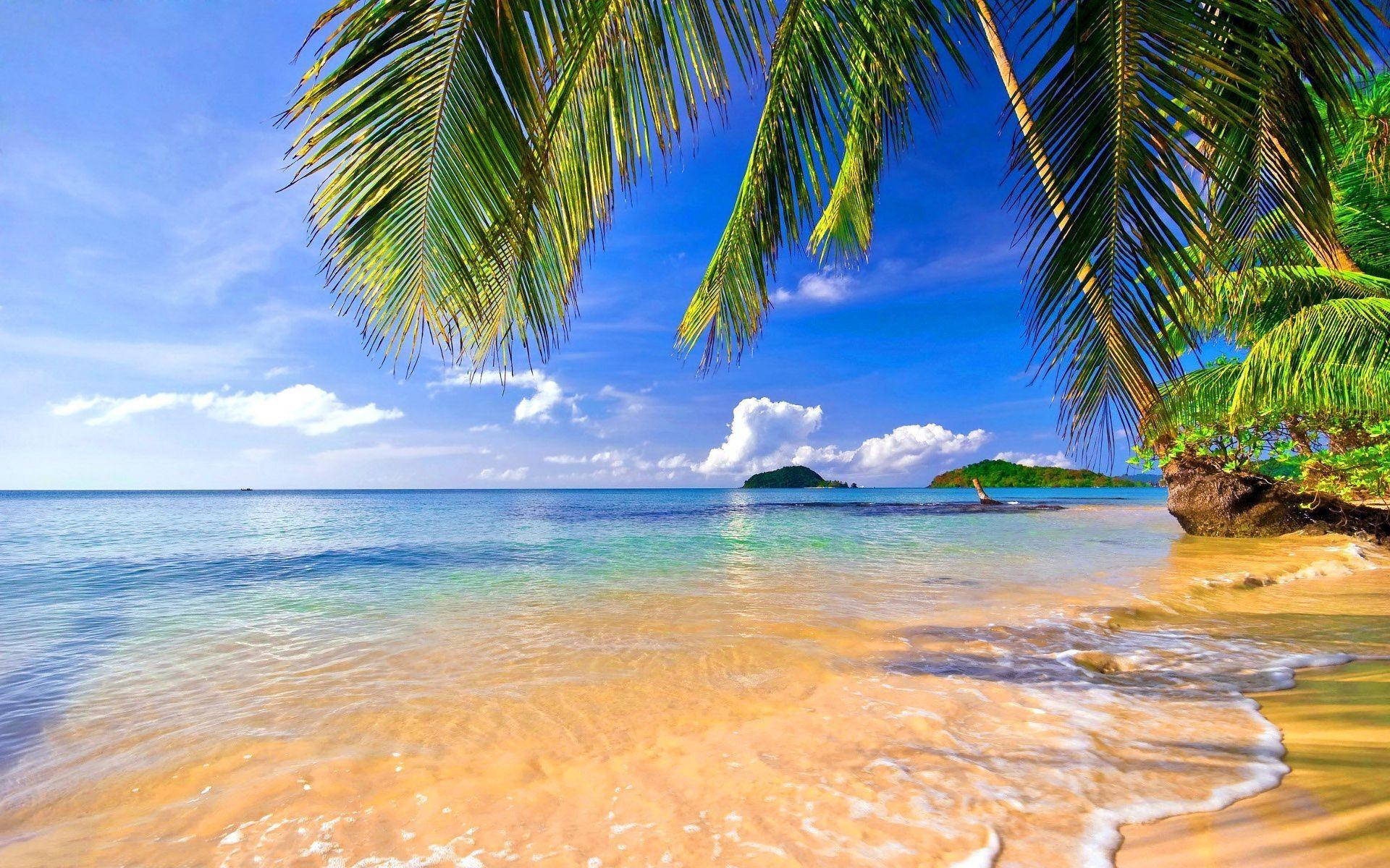 Beach tropical hd Wallpapers