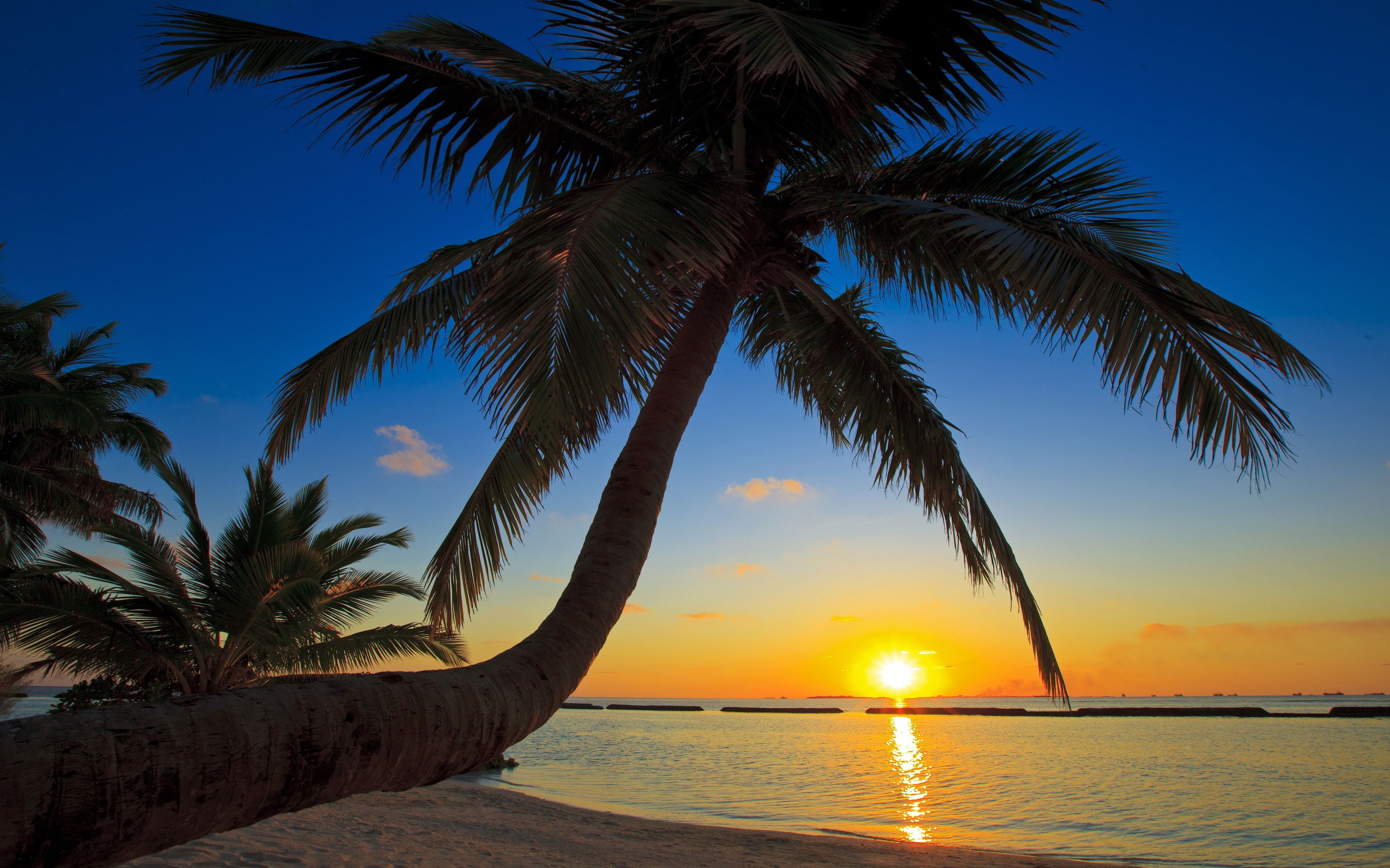 Sunset Beach Wallpaper 2880×1800 – High Definition Wallpaper | Daily  Screens id-7702