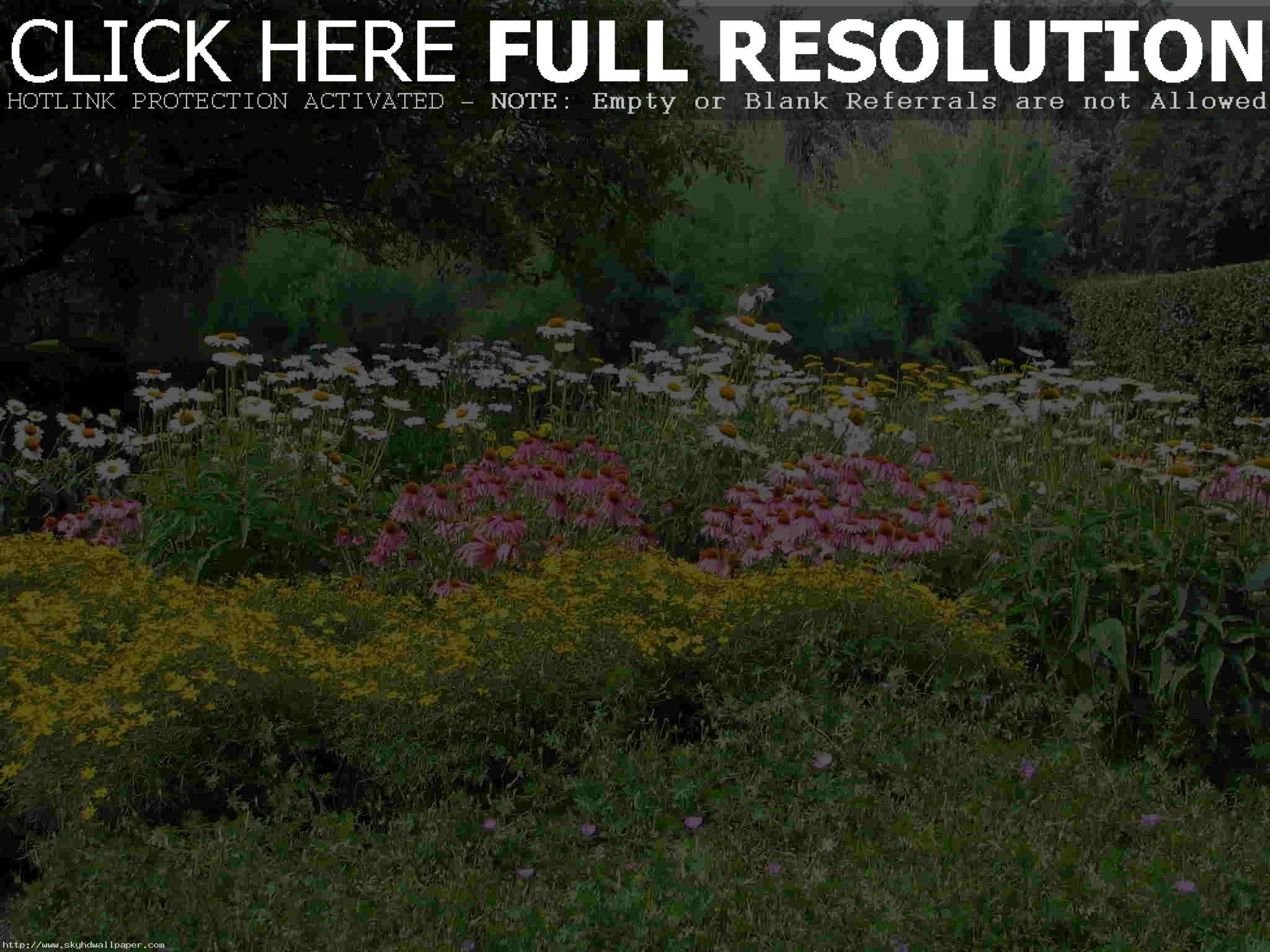 Garden Design Sky Hd Wallpaper Flowers. over the garden wall. china garden.  busch …