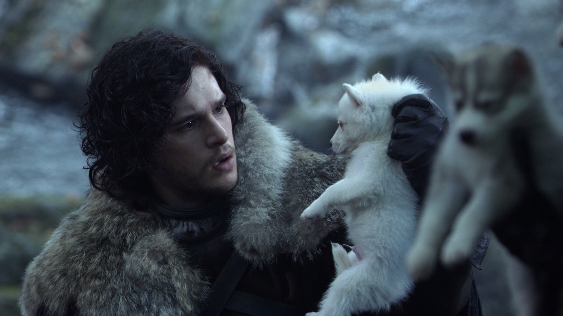 Jon Snow finds Ghost as a pup.