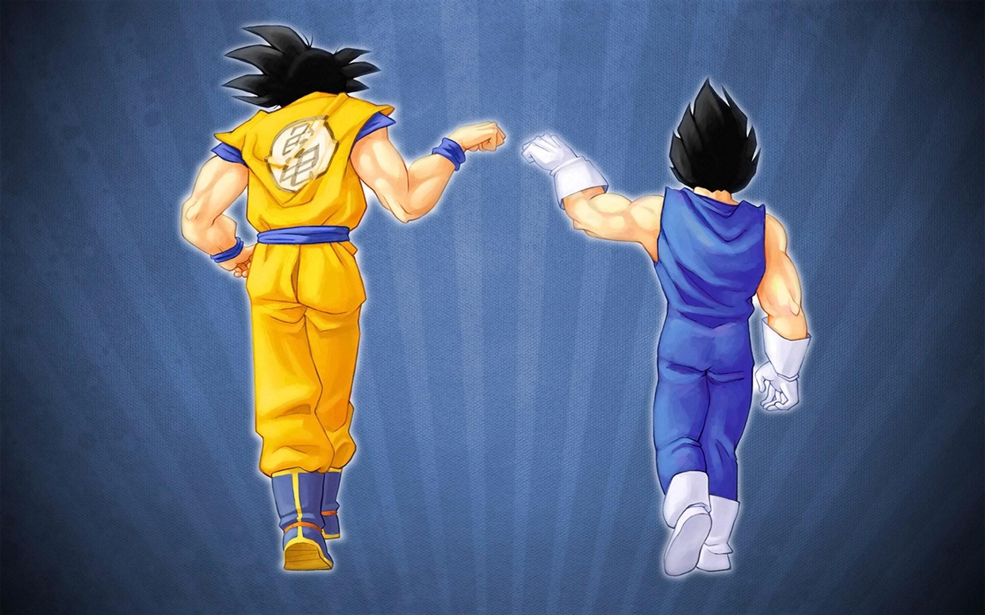 Dragonball Z Vegeta Son Goku wallpaper