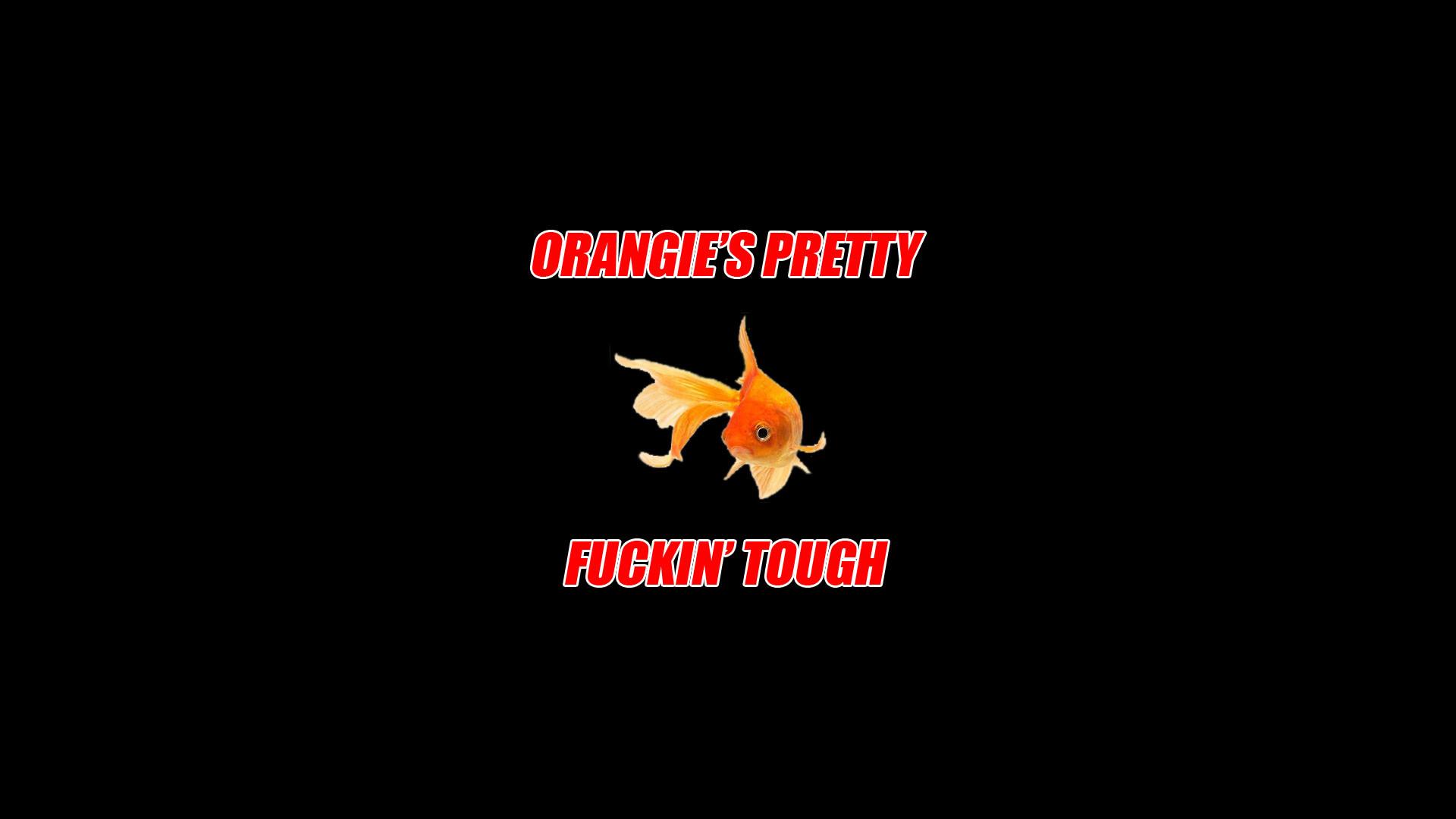 Orangie's pretty fuckin' tough: the dirty, greasy wallpaper (1920×1080) …