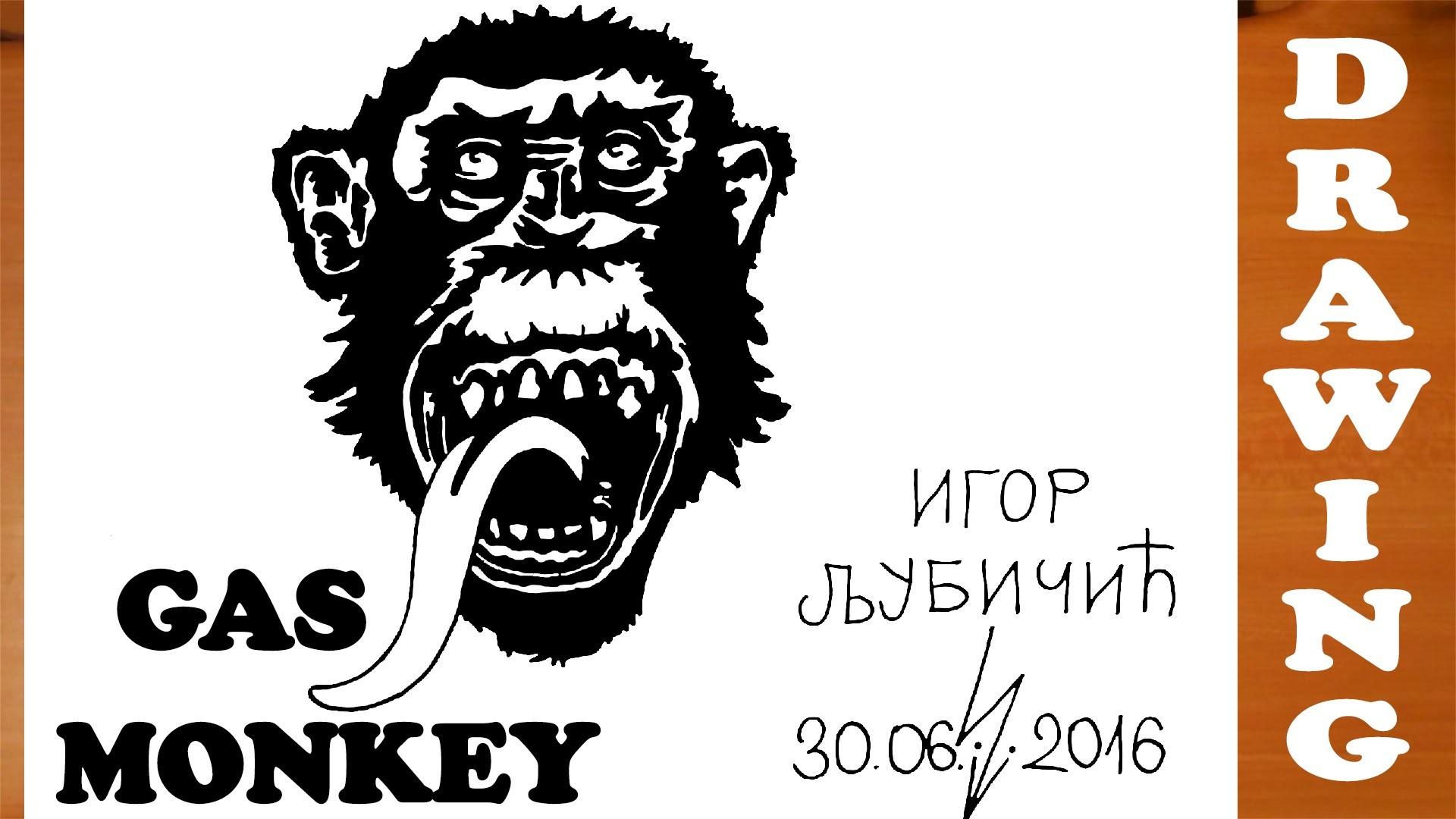 How to Draw a Chimpanzee Monkey Easy for Kids and color – Gas Monkey Garage  Logo   #MrUsegoodART – YouTube
