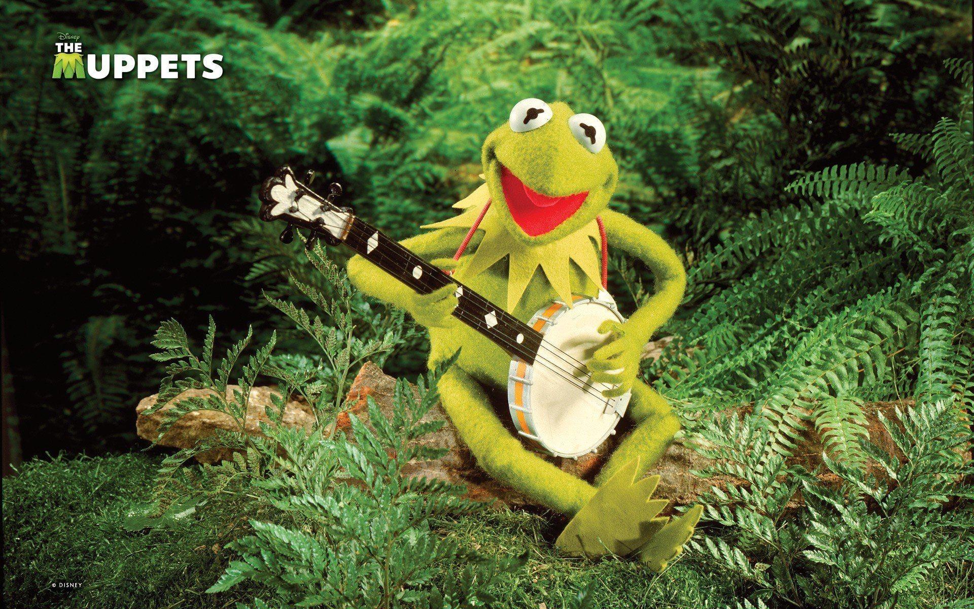 Kermit The Frog Wallpaper Wide