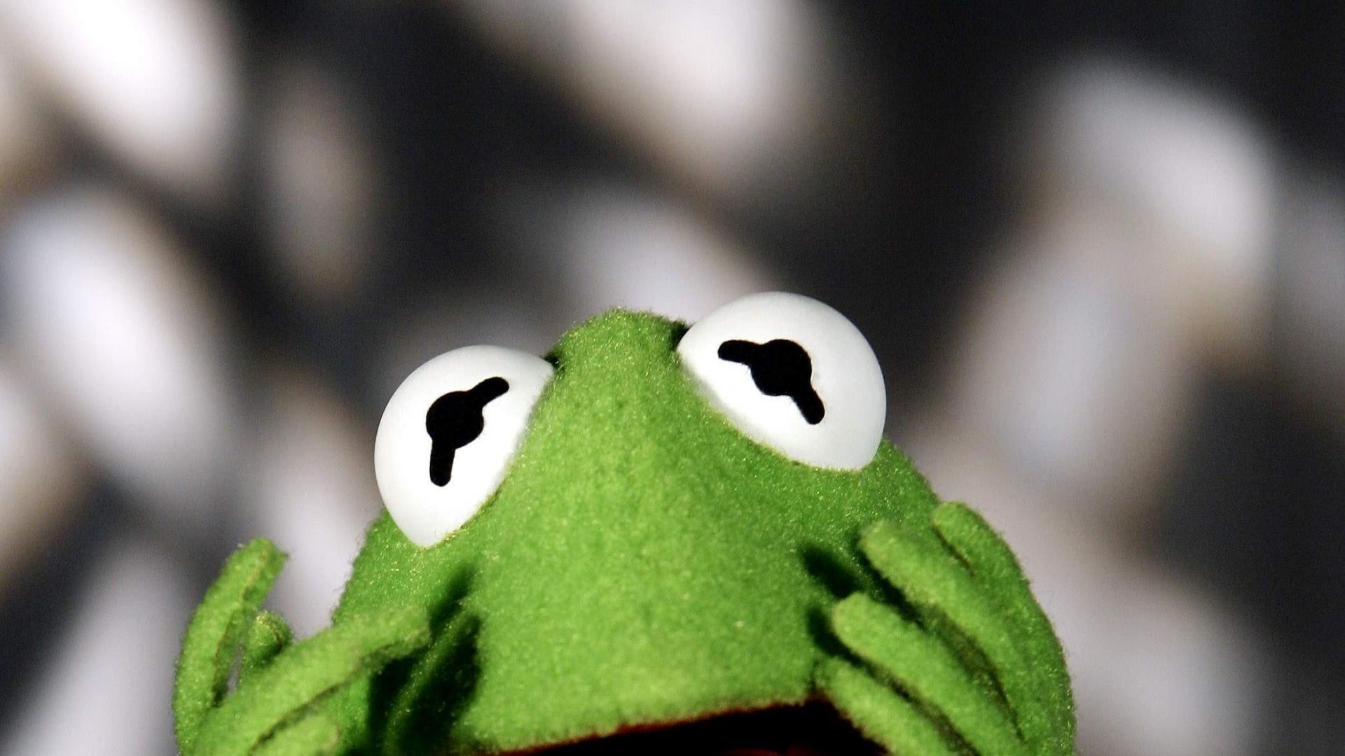 kermit the frog wallpaper