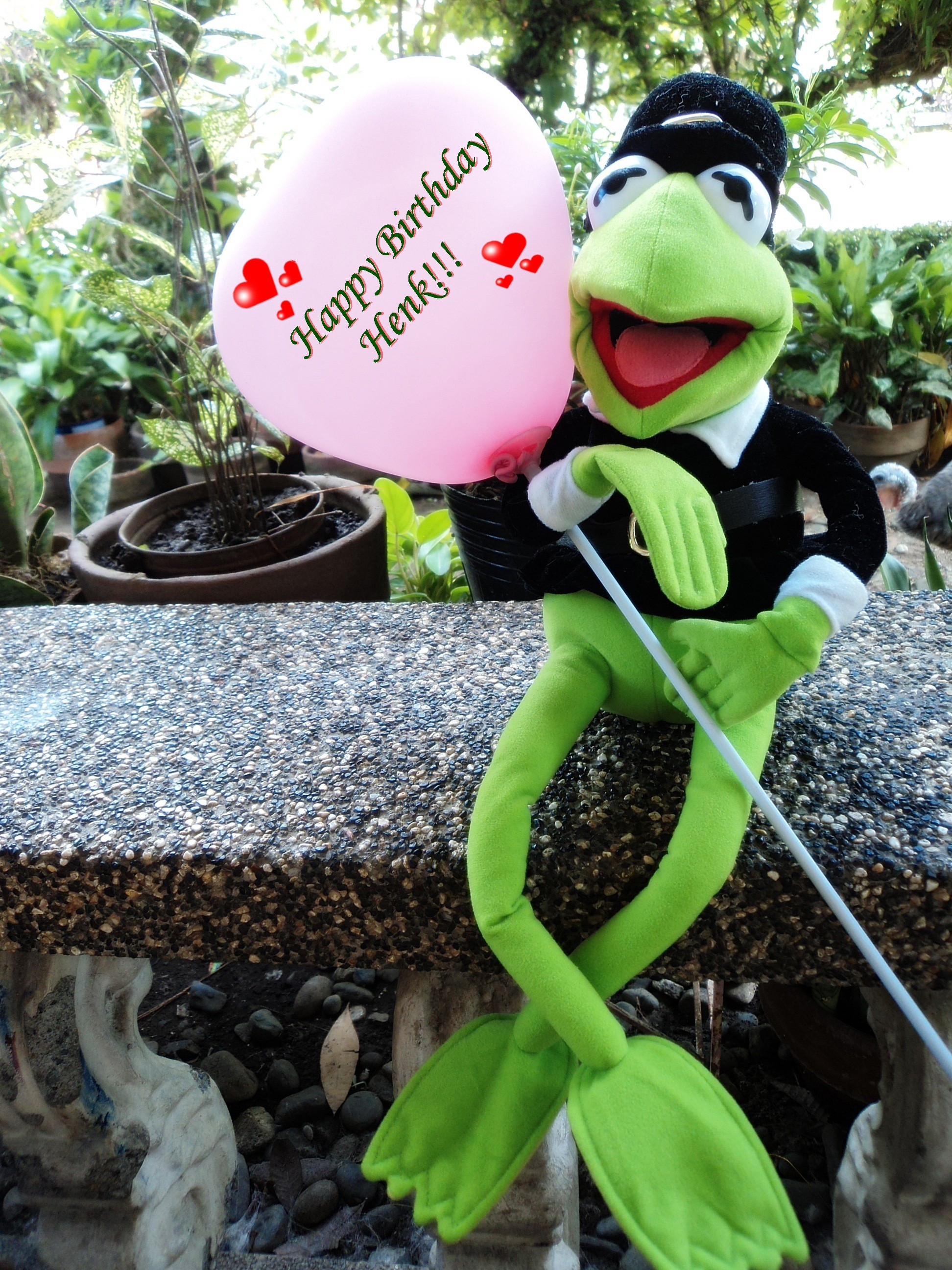 Kermit the Frog images Birthday greetings to Henk! HD wallpaper and  background photos