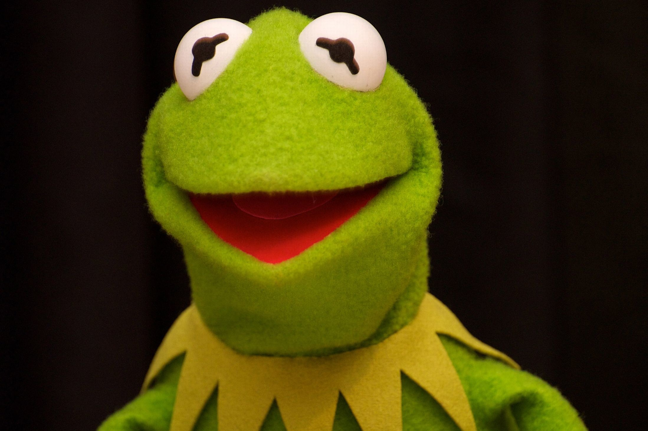 Kermit the frog driving – photo#28
