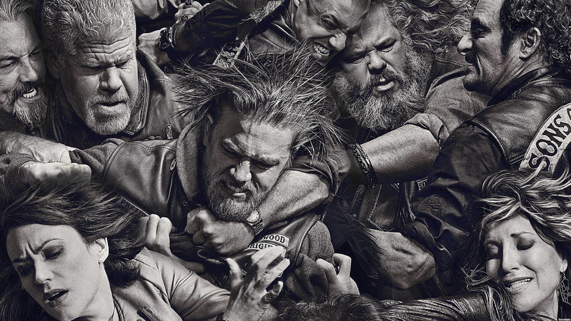 sons of anarchy juice brawl pictures   Sons of Anarchy – Sons of Anarchy  Wallpaper (
