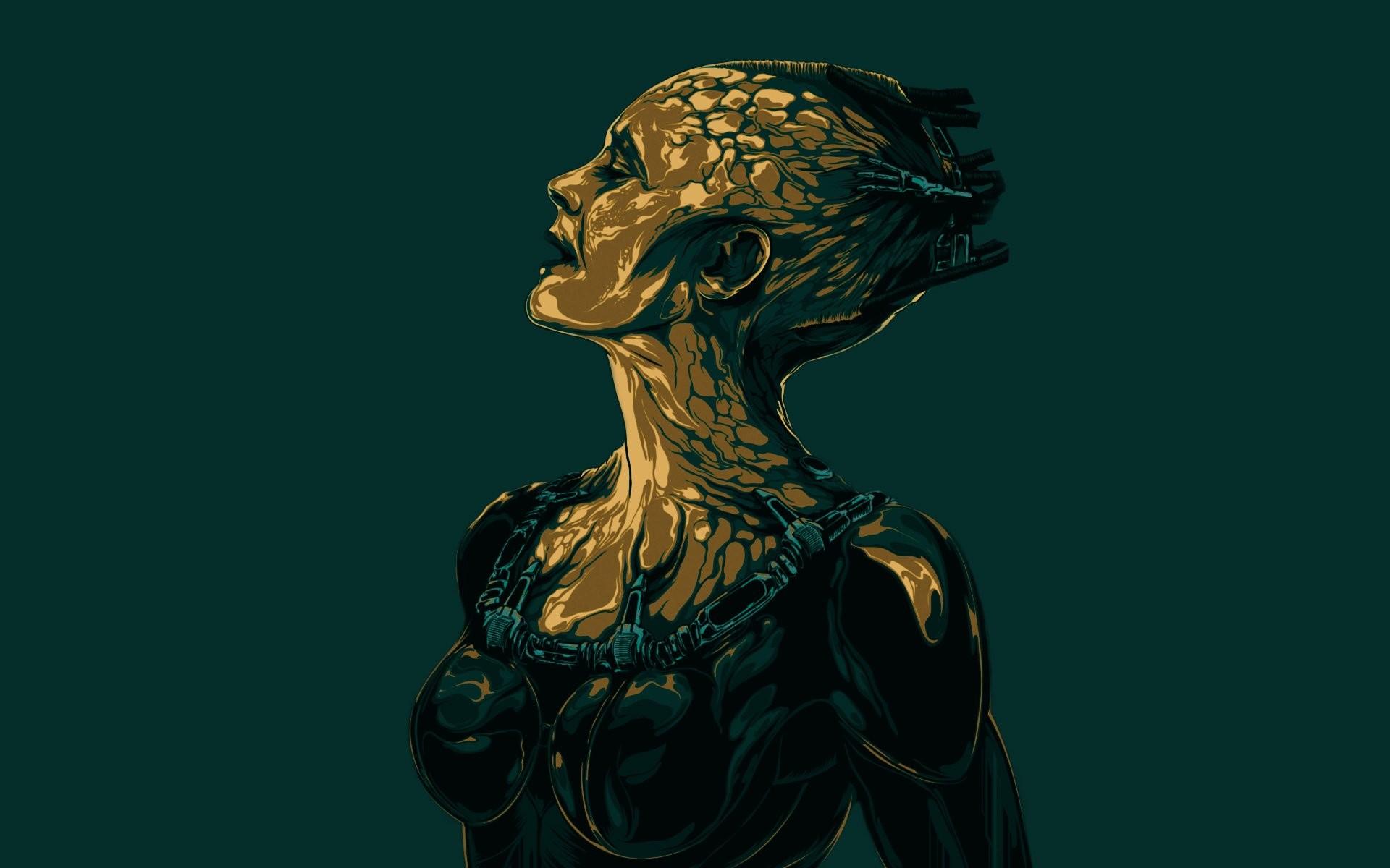 Borg 629058