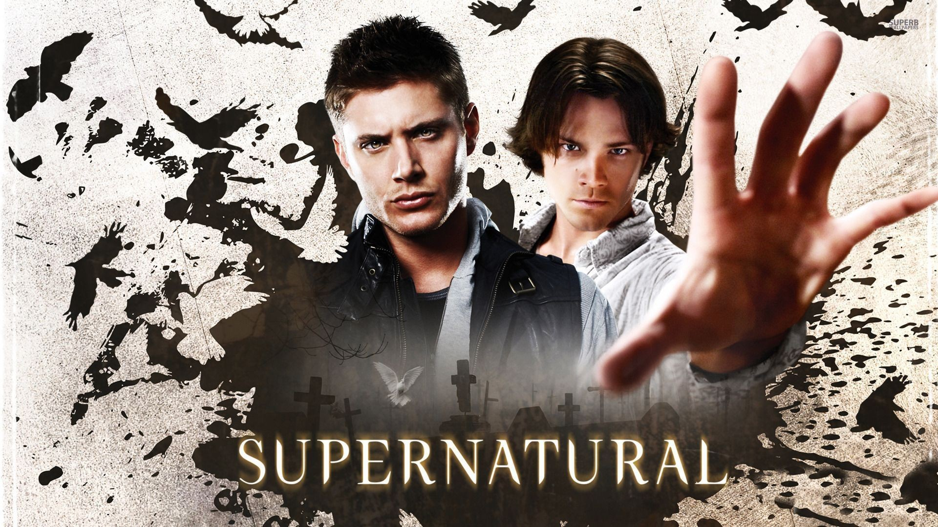 Supernatural wallpaper – TV Show wallpapers – #15005