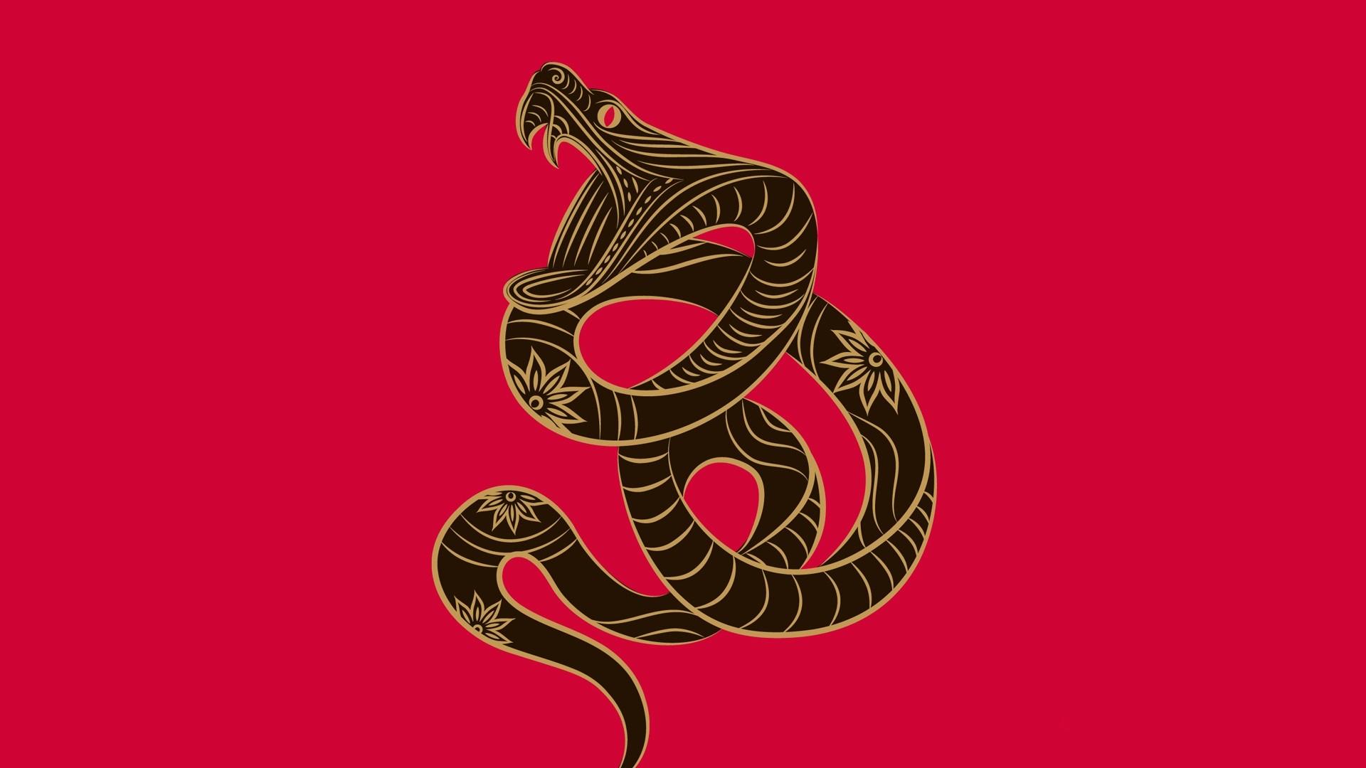 Preview wallpaper zodiac sign, snake, minimalism, vector 1920×1080