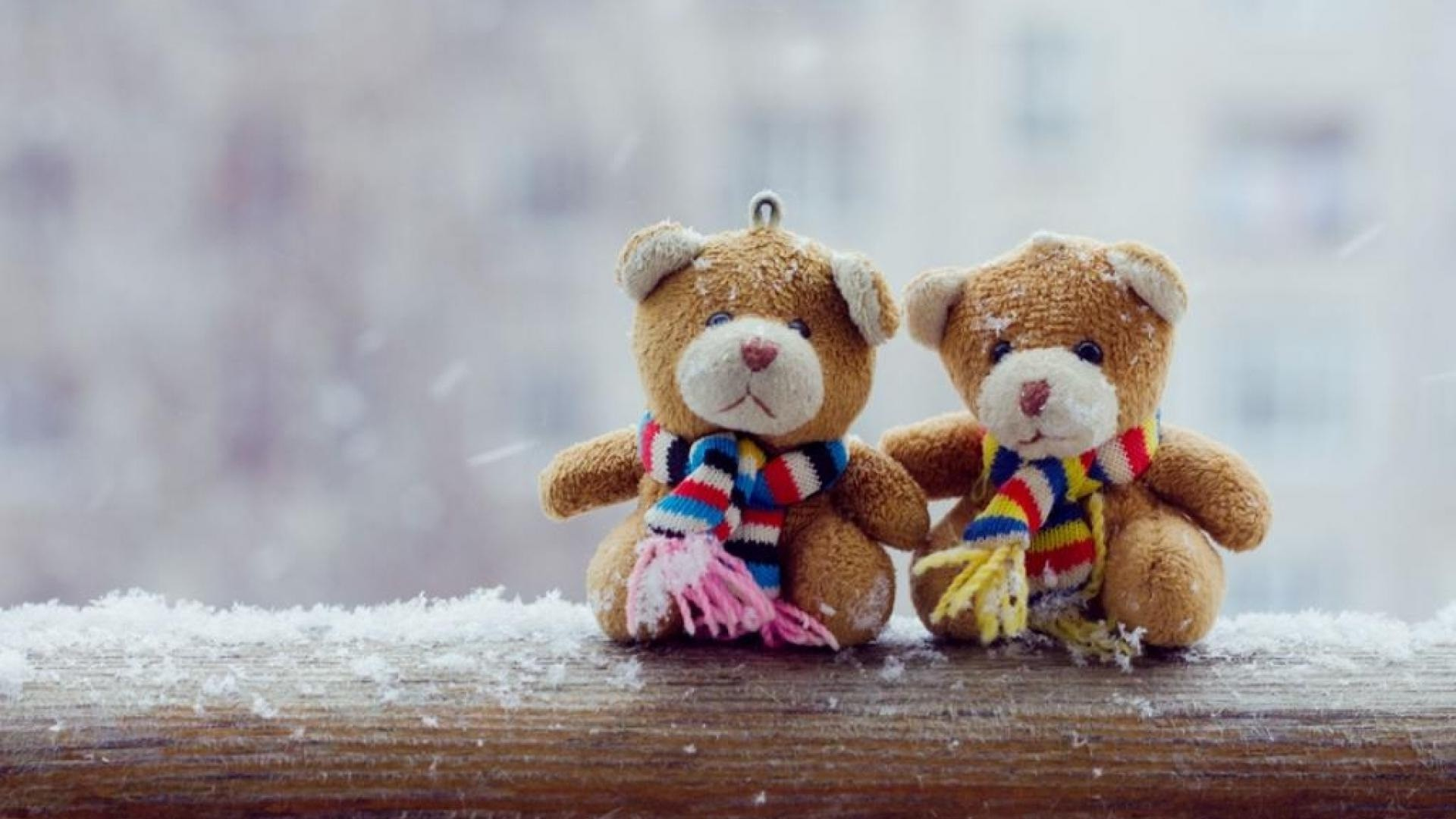 New Year 2017 Teddy Bear Wallpapers Quotes and Images – Happy New Year 2017  Quotes Wishes Sayings Images