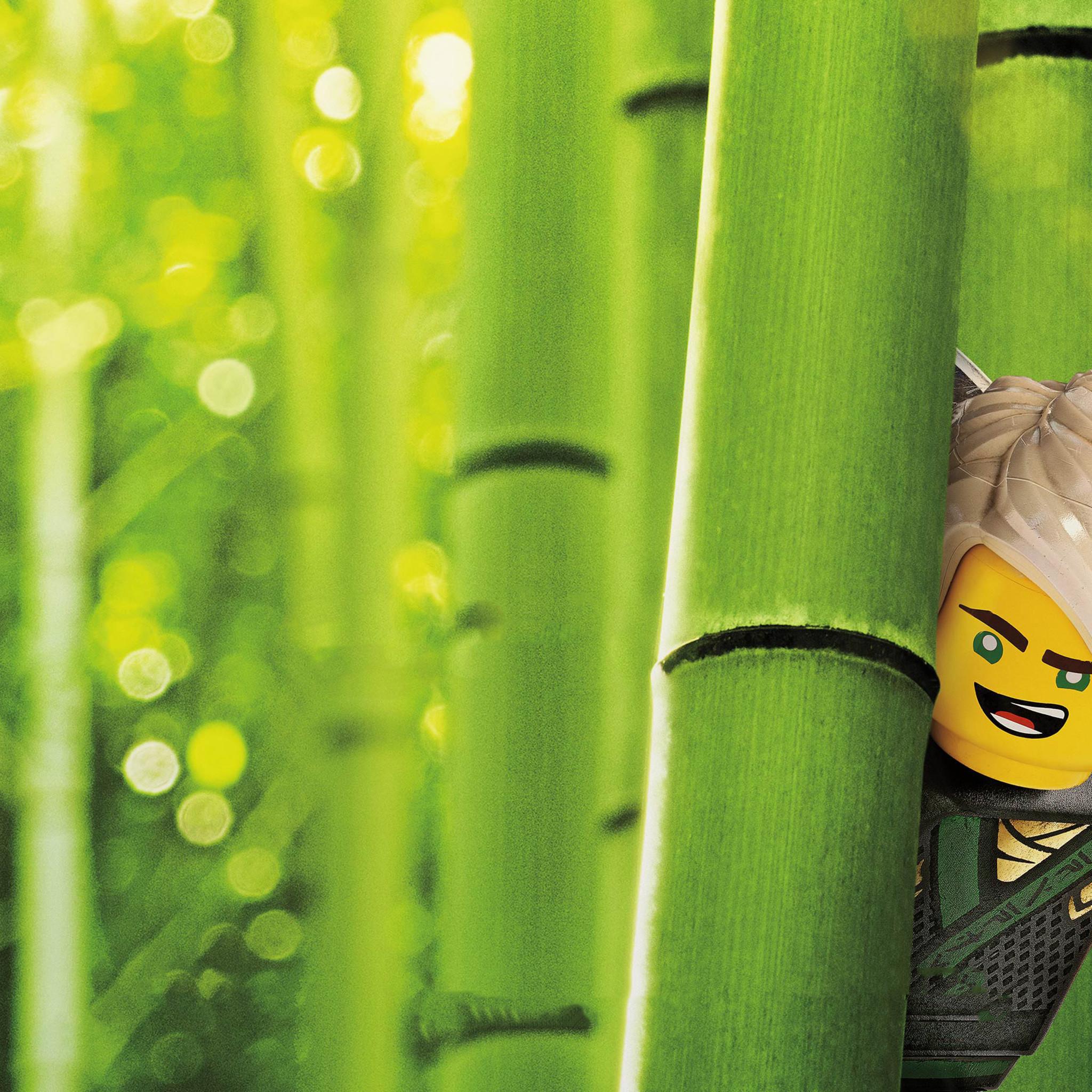 lloyd-the-lego-ninjago-movie-v0.jpg
