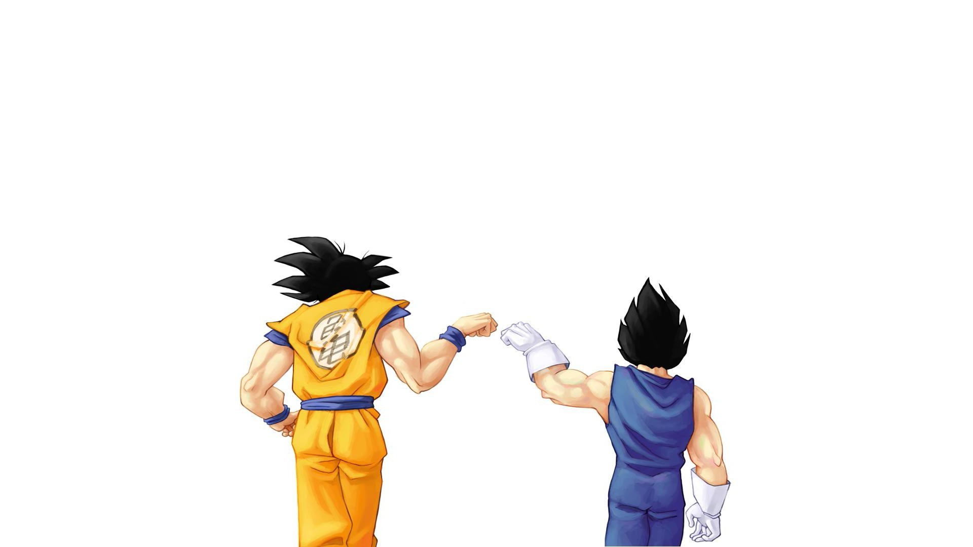 Anime Son Goku Vegeta behind Dragon Ball Z anime