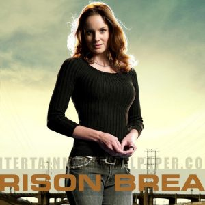 Prison Break Wallpapers HD