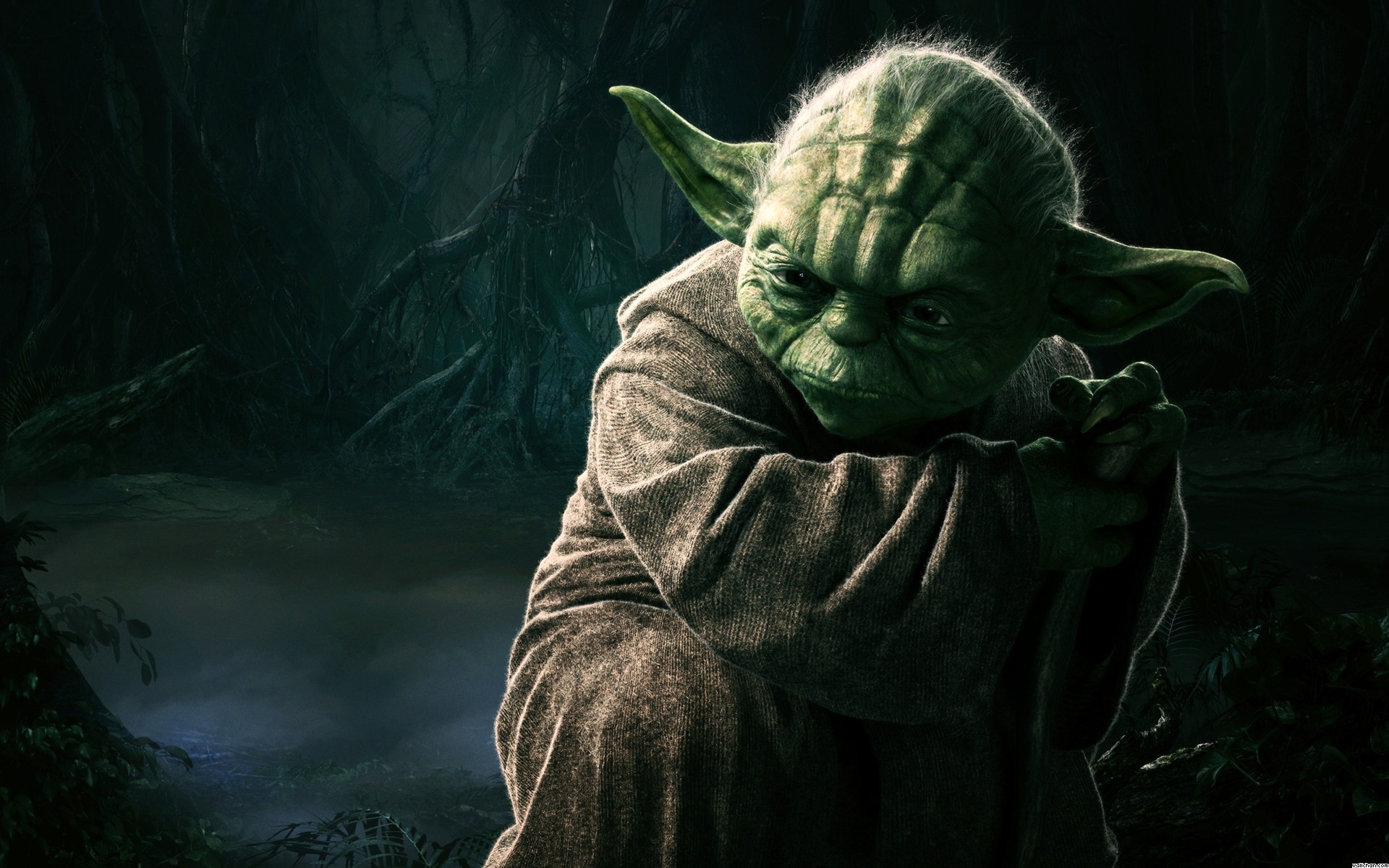 HD Wallpaper and background photos of Yoda Wallpaper for fans of Star Wars  images.