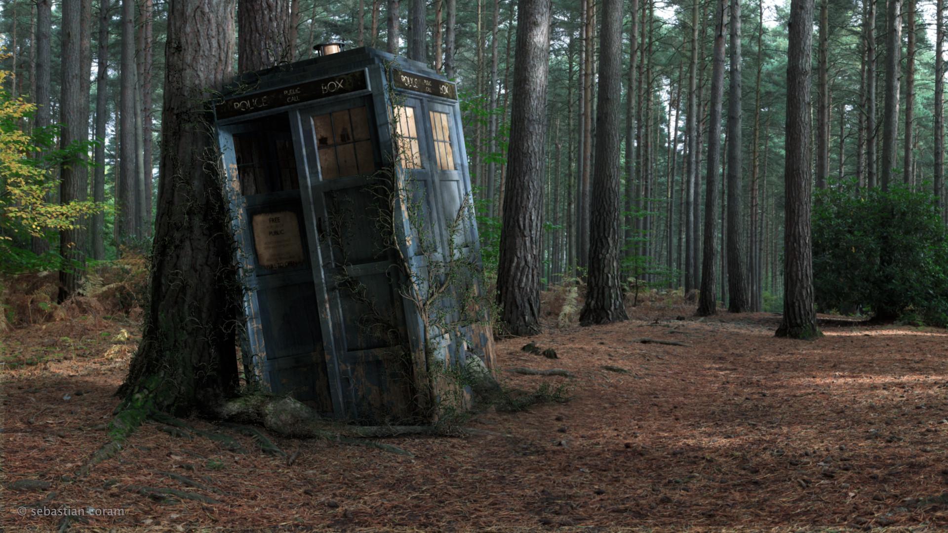 Doctor Who: Damaged Police Box